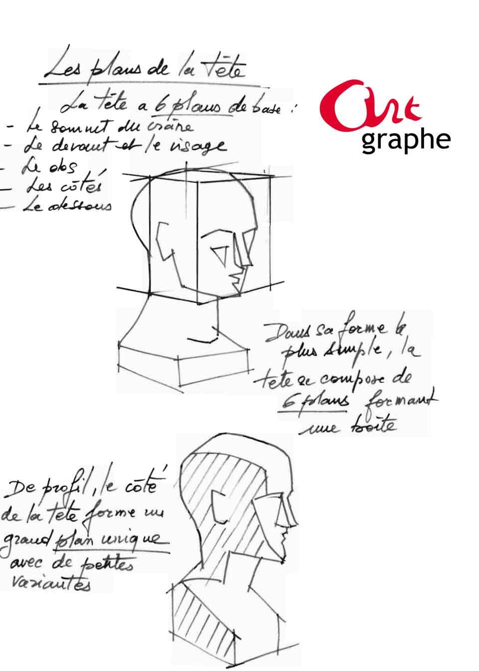 Apprendre à dessiner les volumes d'une tête