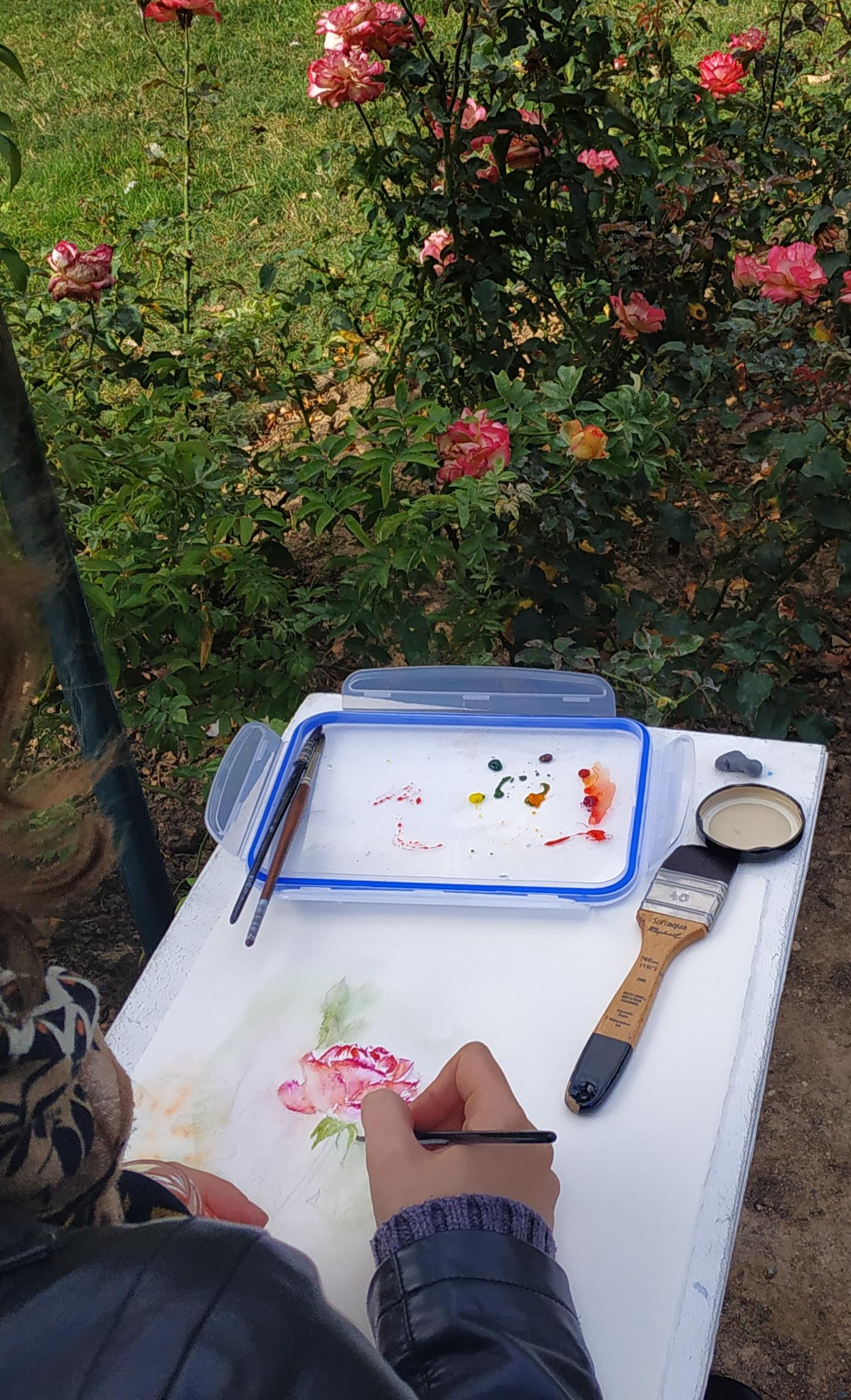 S�ances d'aquarelles en ext�rieur  cours de dessin