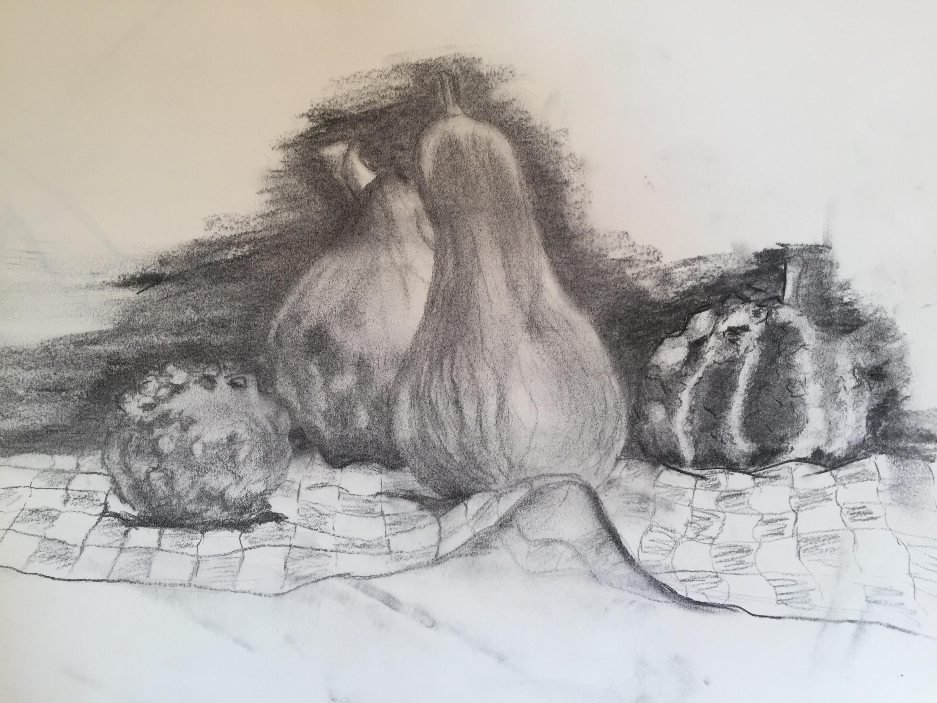 Natures mortes fusain sur papier  cours de dessin