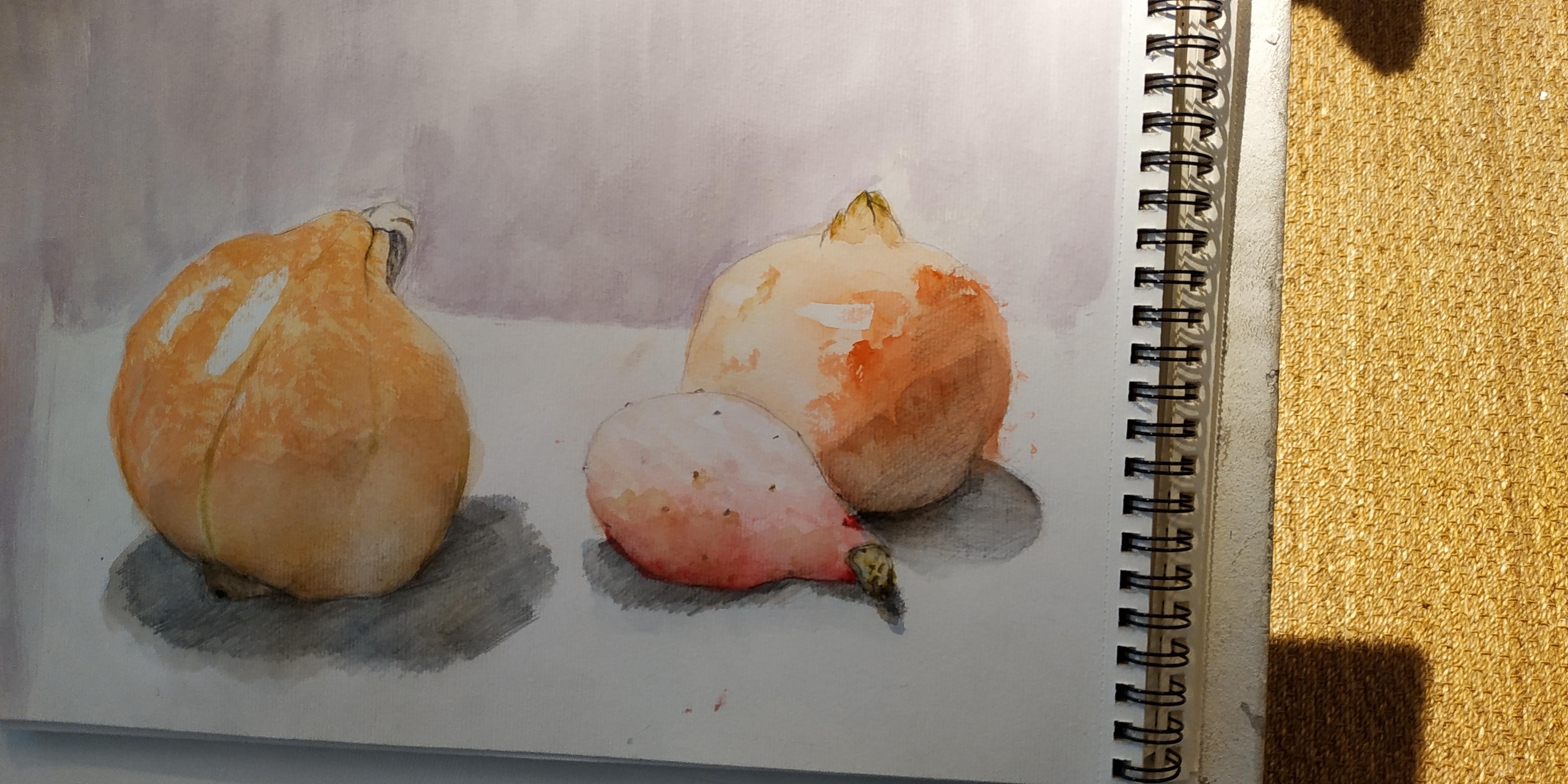 Natures mortes crayon aquarelle Sur papier  cours de dessin