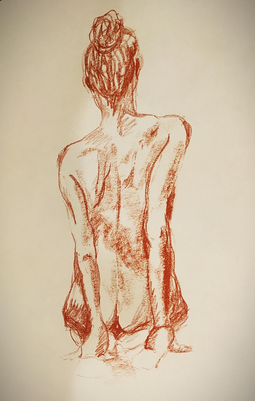 Dessin mod�le vivant de dos sanguine sur papier  cours de dessin