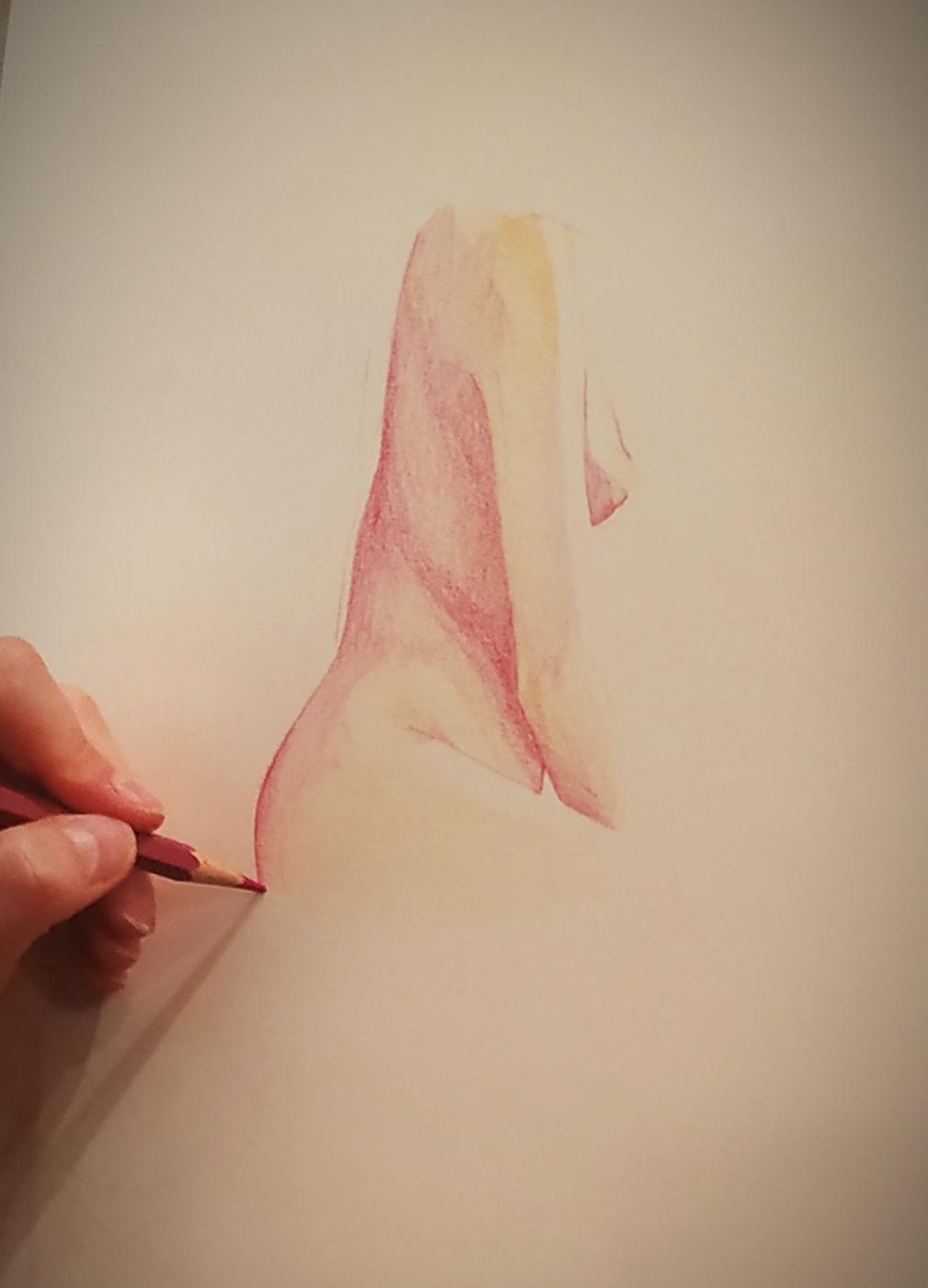Crayon de couleur sur papier  cours de dessin
