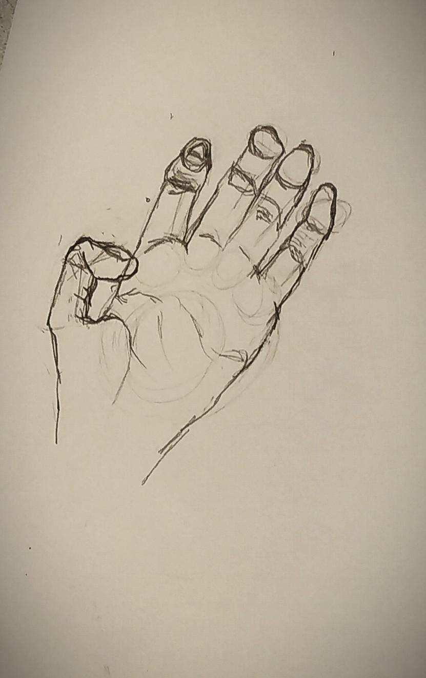 �bauche �tude d'une main dessin  cours de dessin