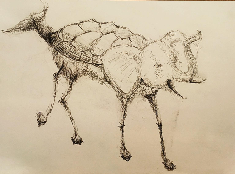 Dessin �l�phant tortue poisson  cours de dessin