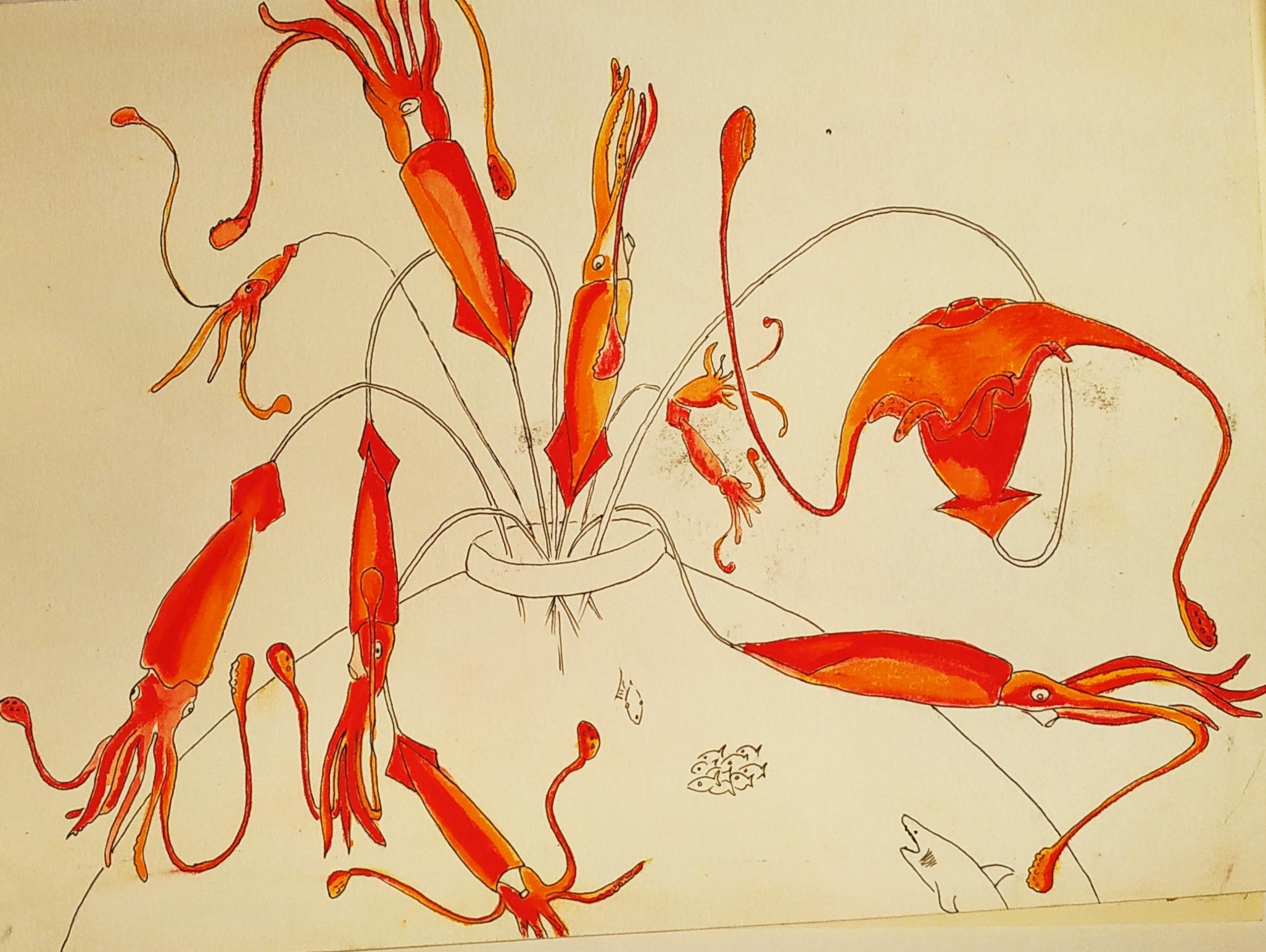 Dessin de seiche orange sur papier  cours de dessin