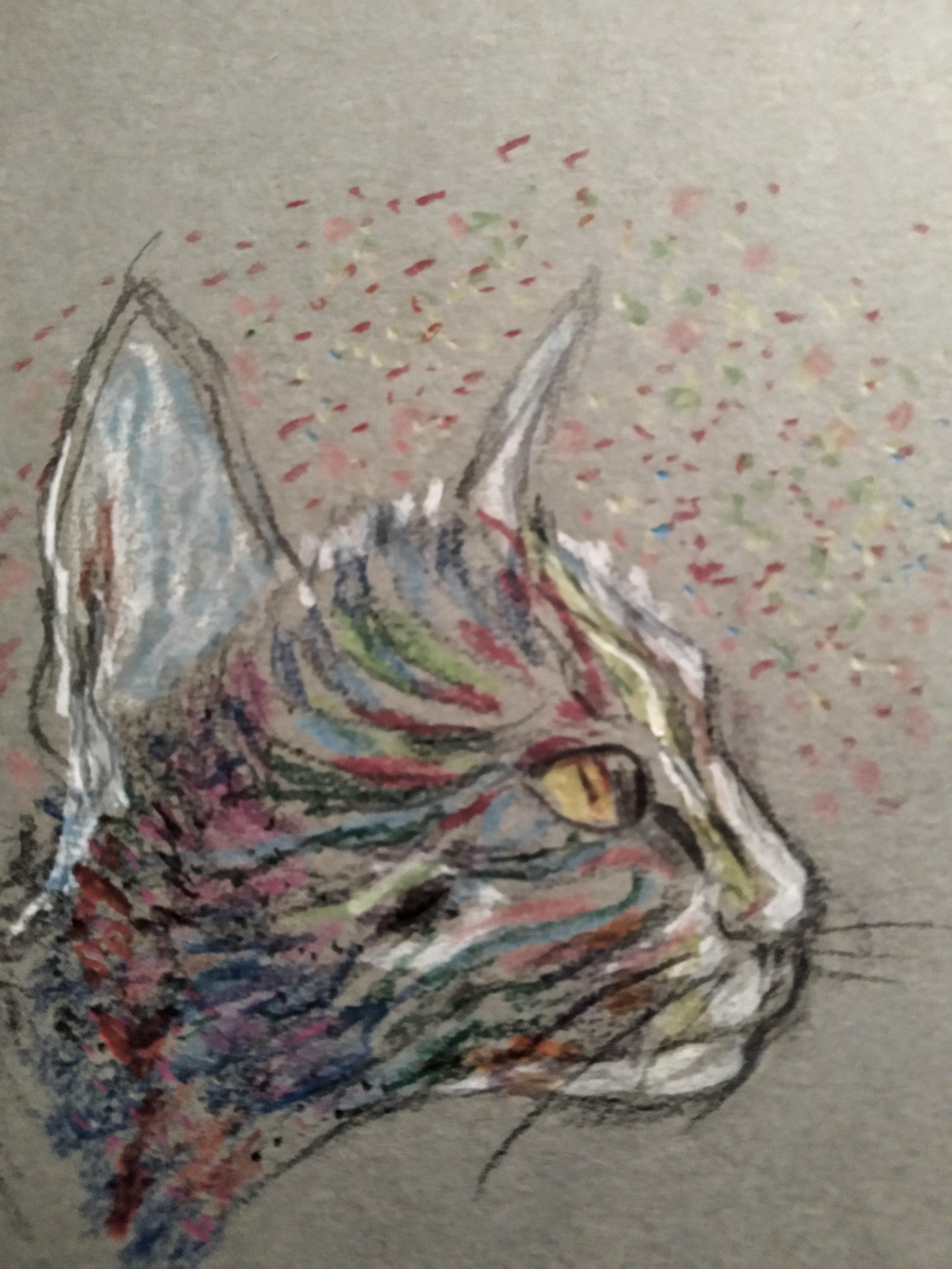 Dessin chat couleurs  cours de dessin