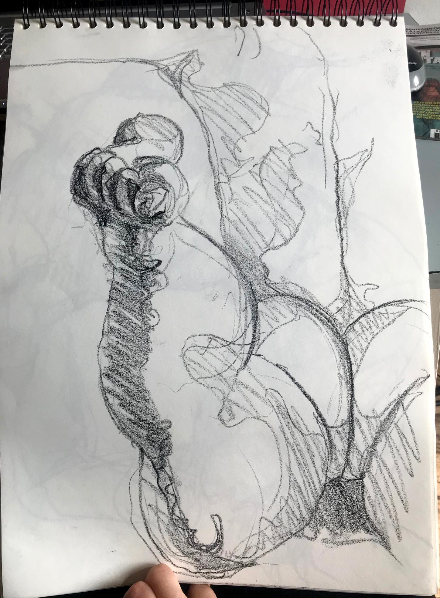 Dessin pied graphite  cours de dessin