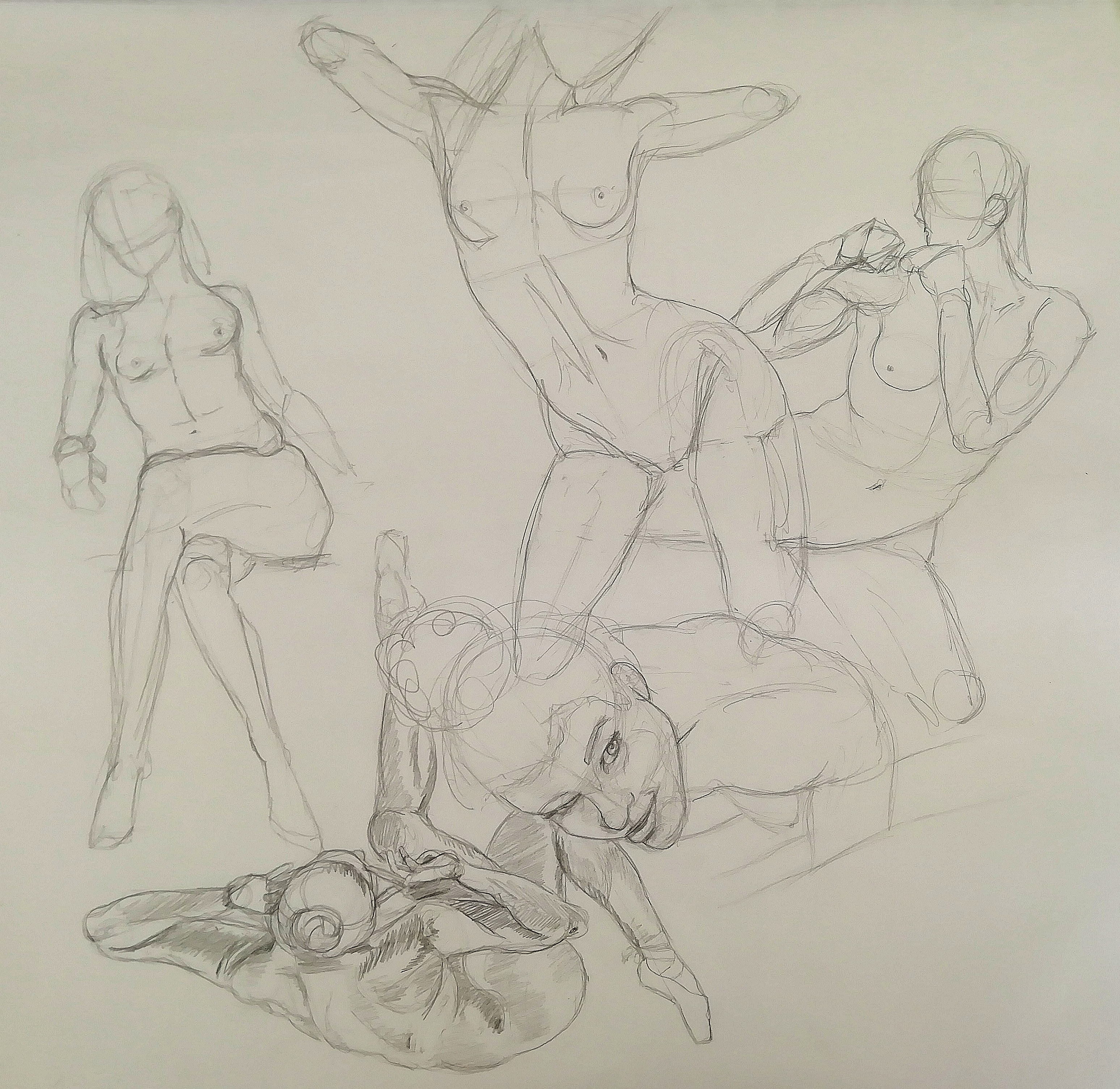 Composition étude du corps humain  cours de dessin
