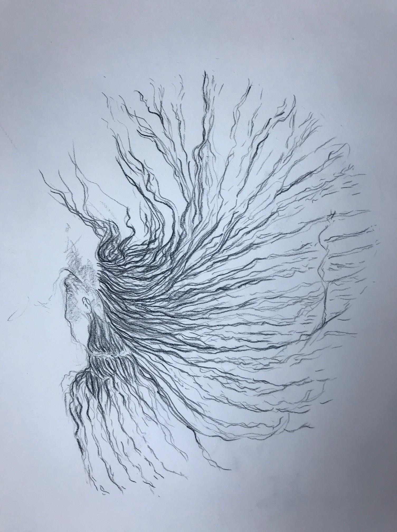 Dessin cheveux crayon de papier  cours de dessin