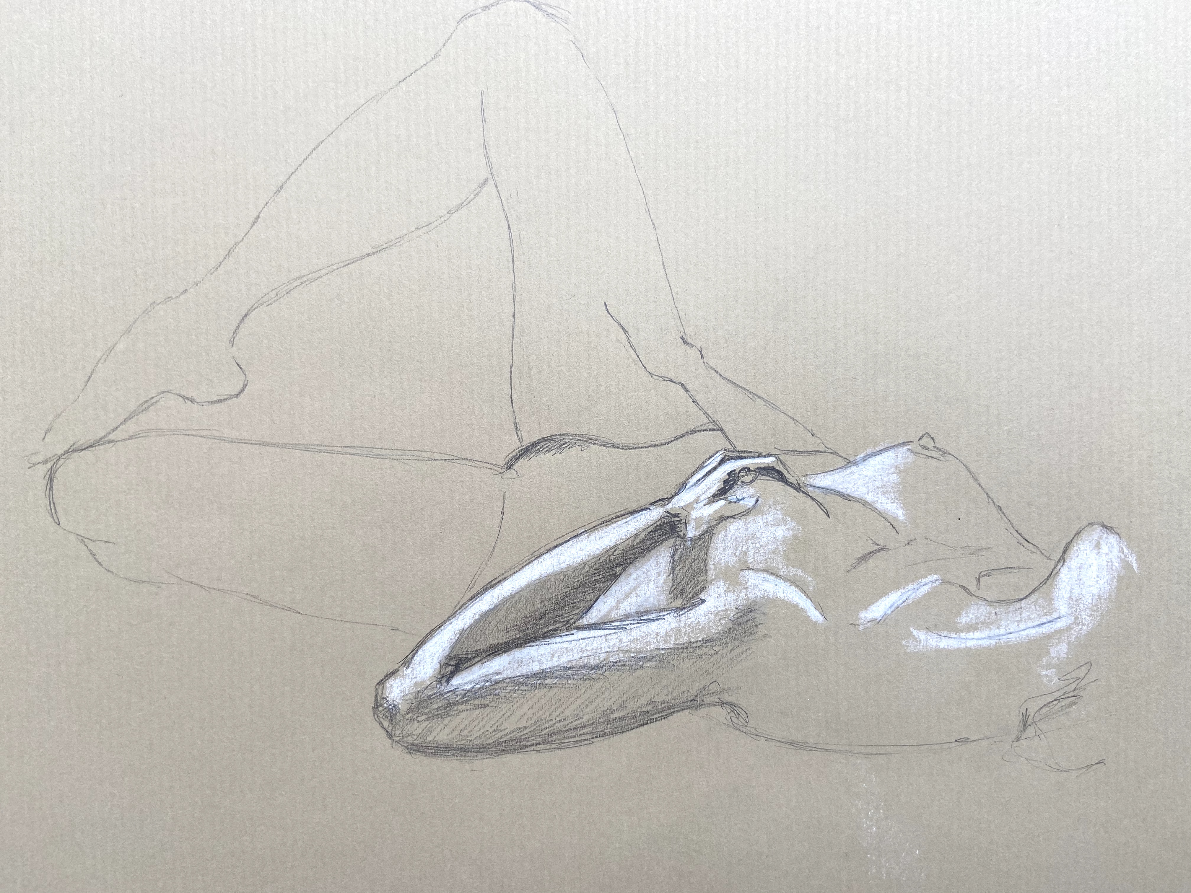 Esquisse dessin graphite pastel blanc sur papier Kraft  cours de dessin