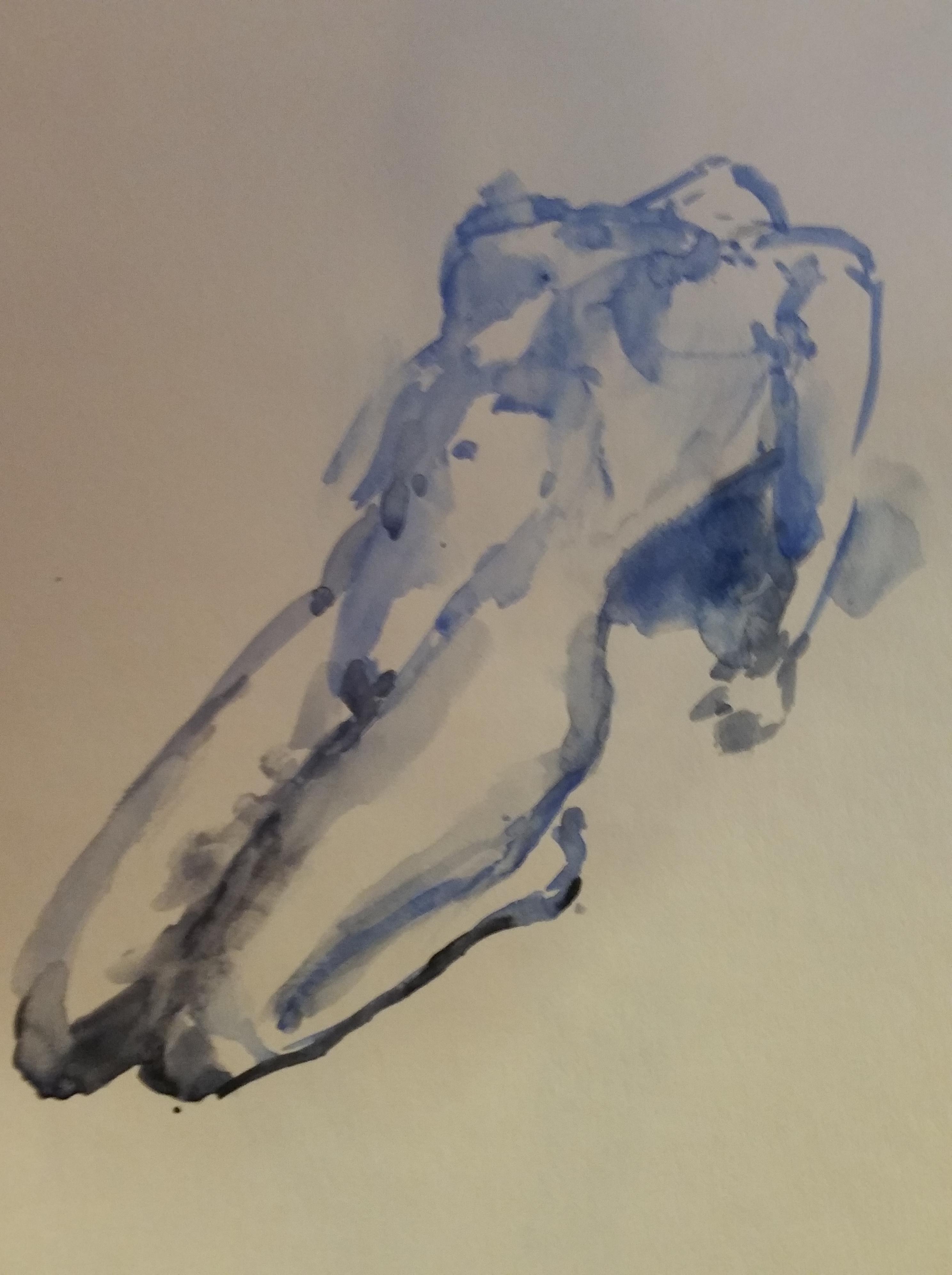Modèle allongé bleue aquarelle sur papier dessin  cours de dessin