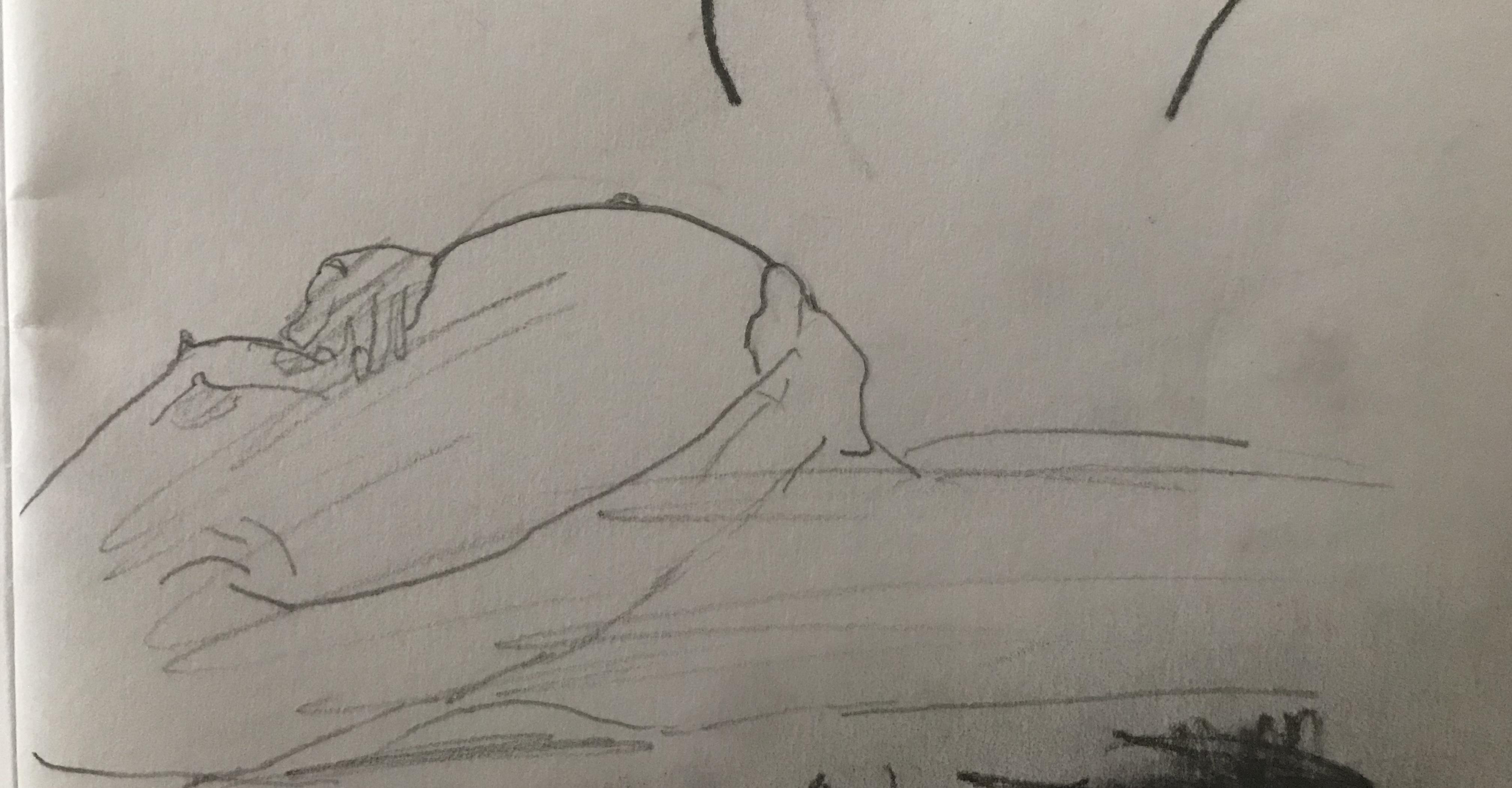 Dessin au trait ventre femme  cours de dessin