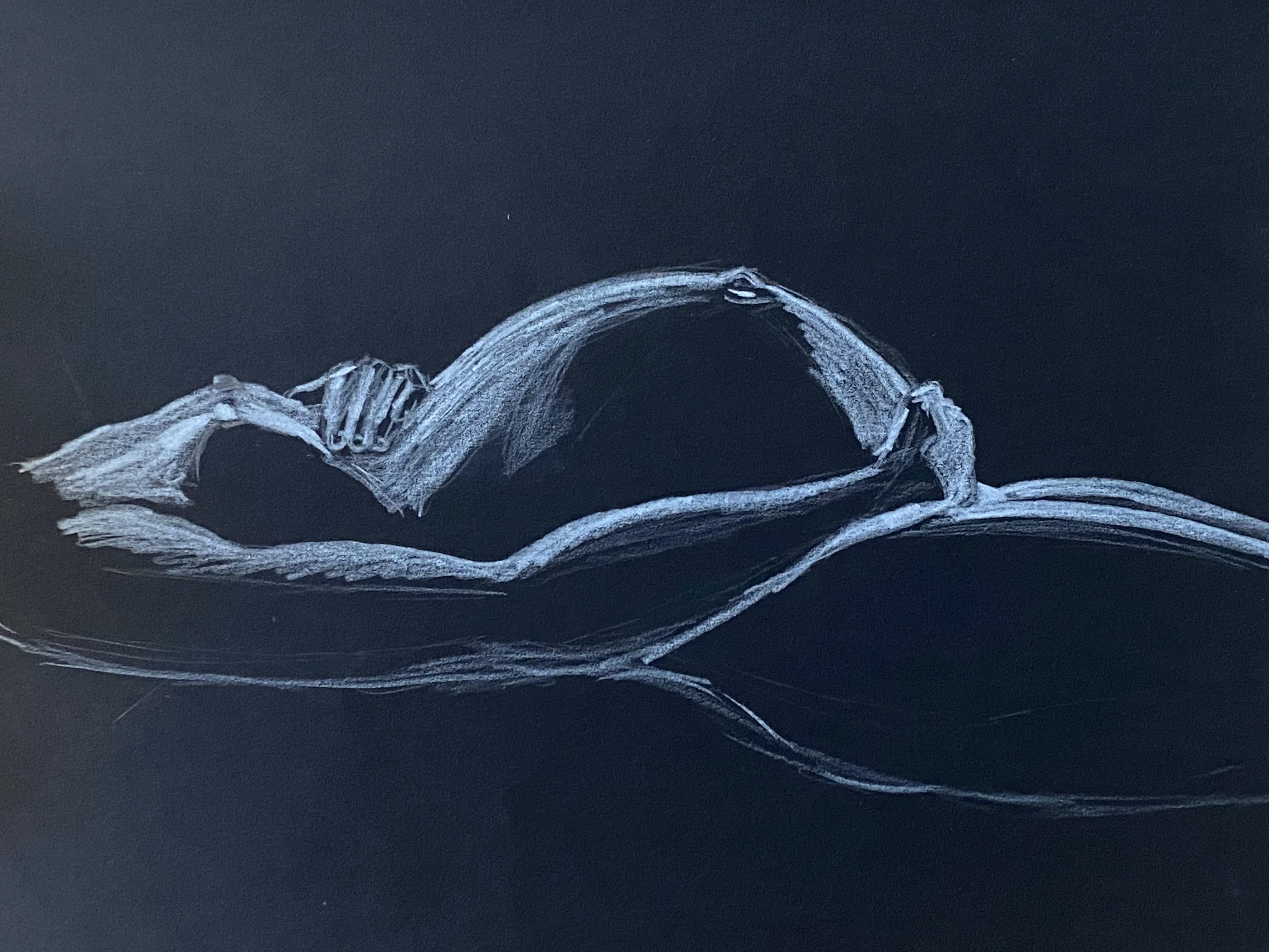 dessin ventre femme enceinte crayon blanc sur papier noir  cours de dessin