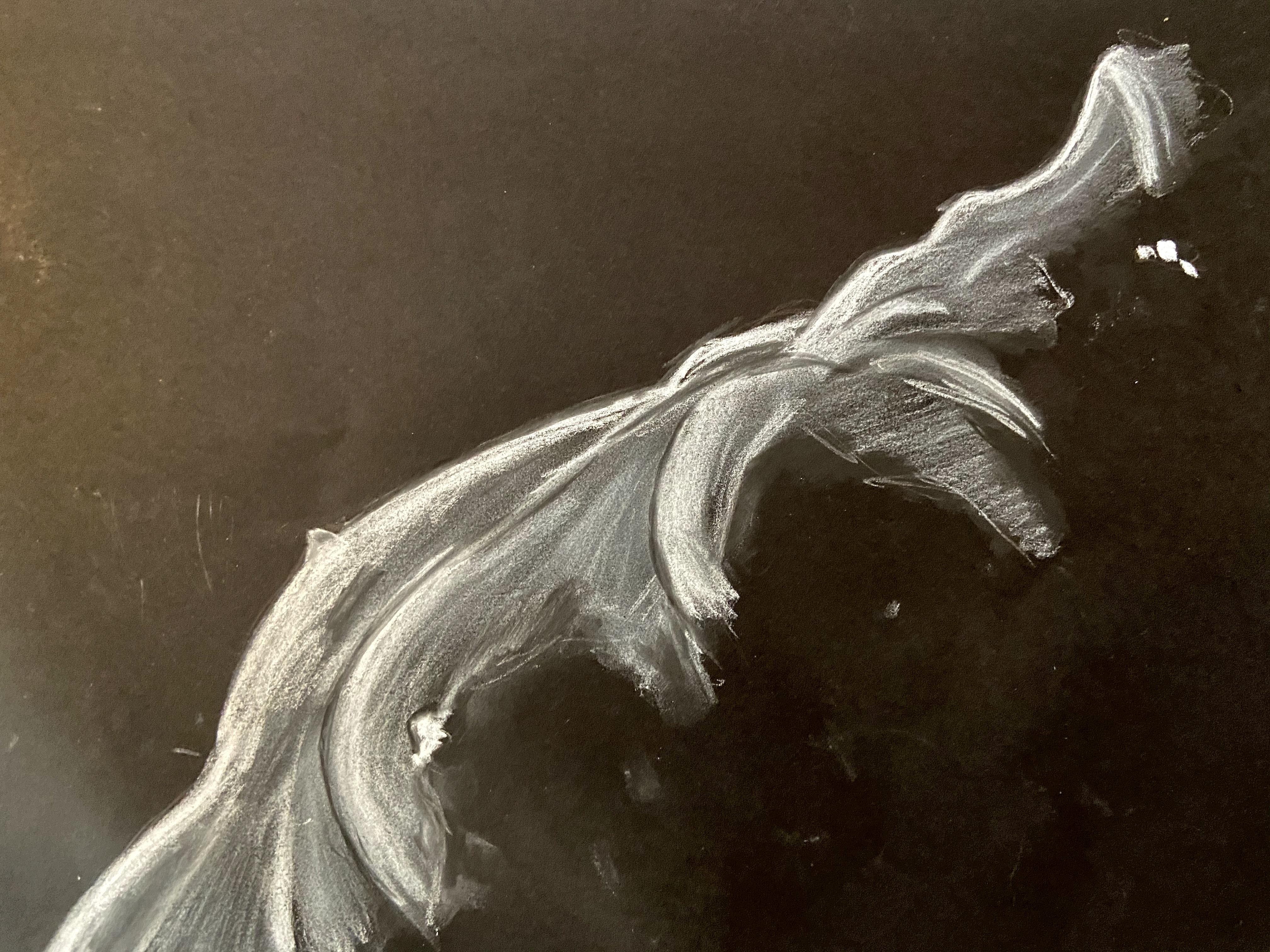 buste craie blanche sur papier noir dessin  cours de dessin