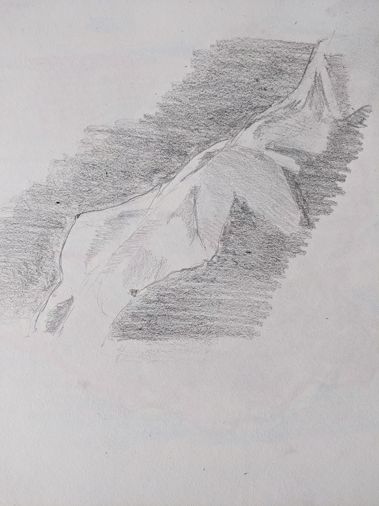 croquis buste femme fusain  cours de dessin