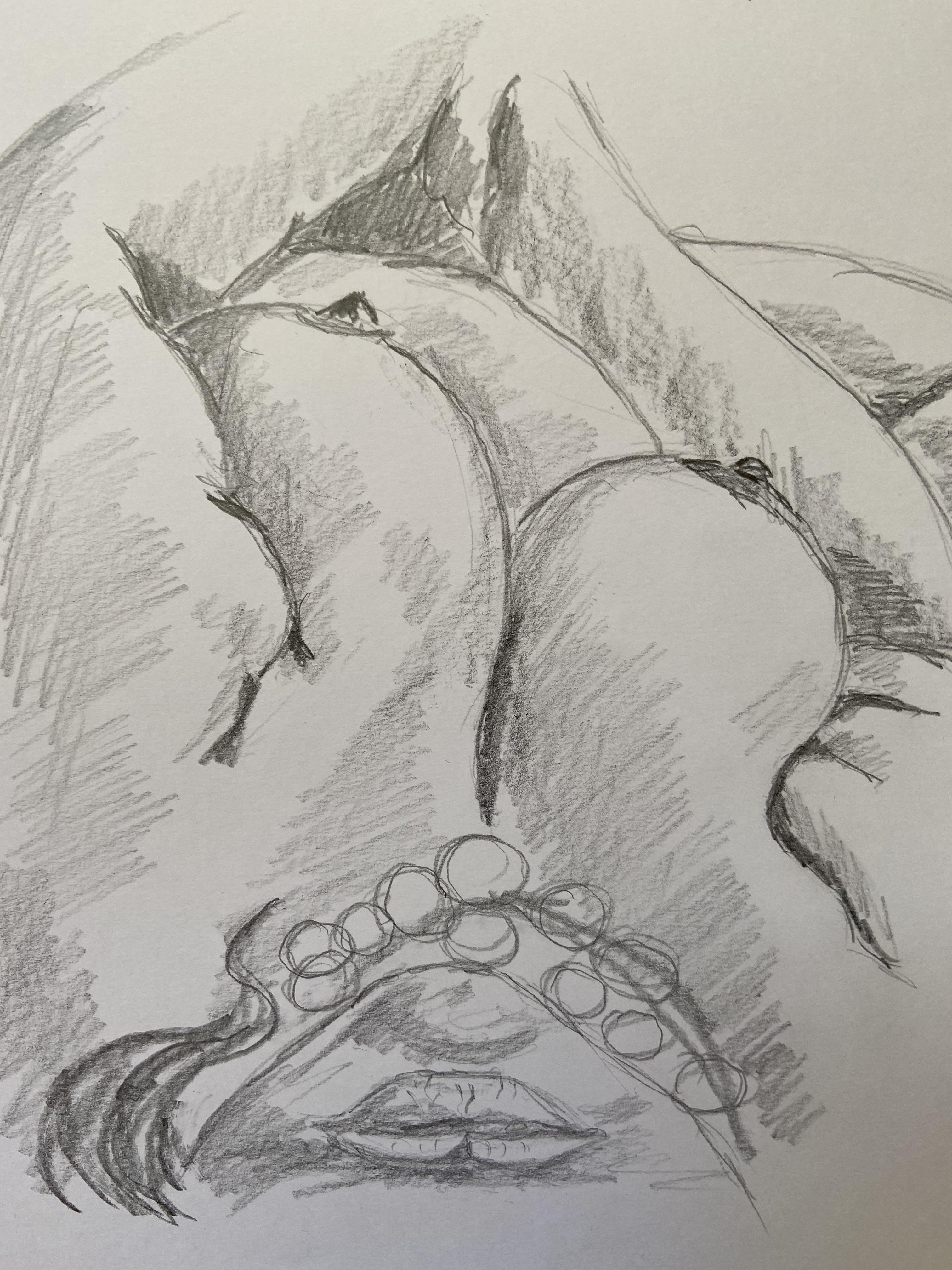 gros plan dessin crayon de papier hachure   cours de dessin