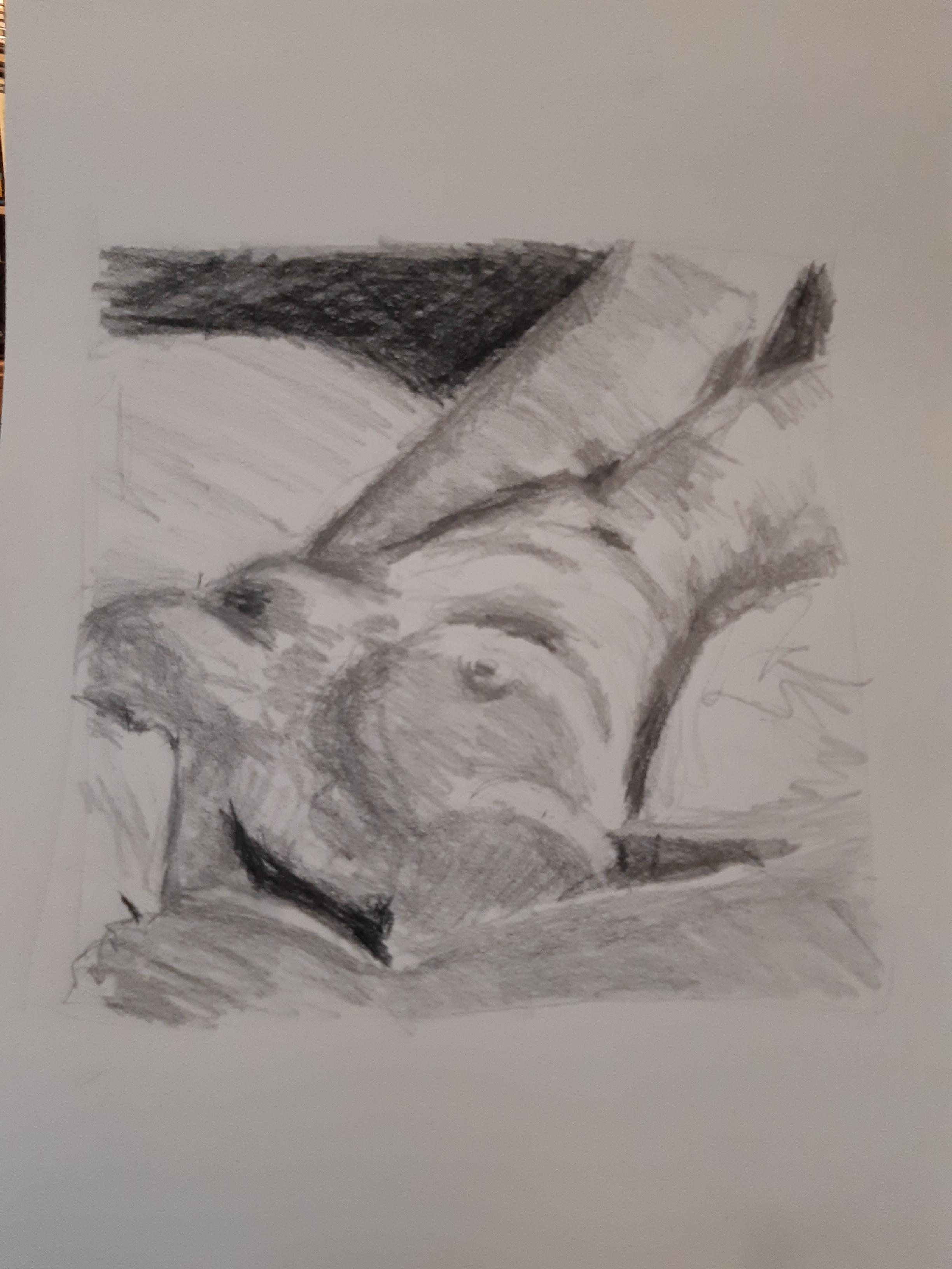 Raccourci perspectives dessin graphite torse femme  cours de dessin