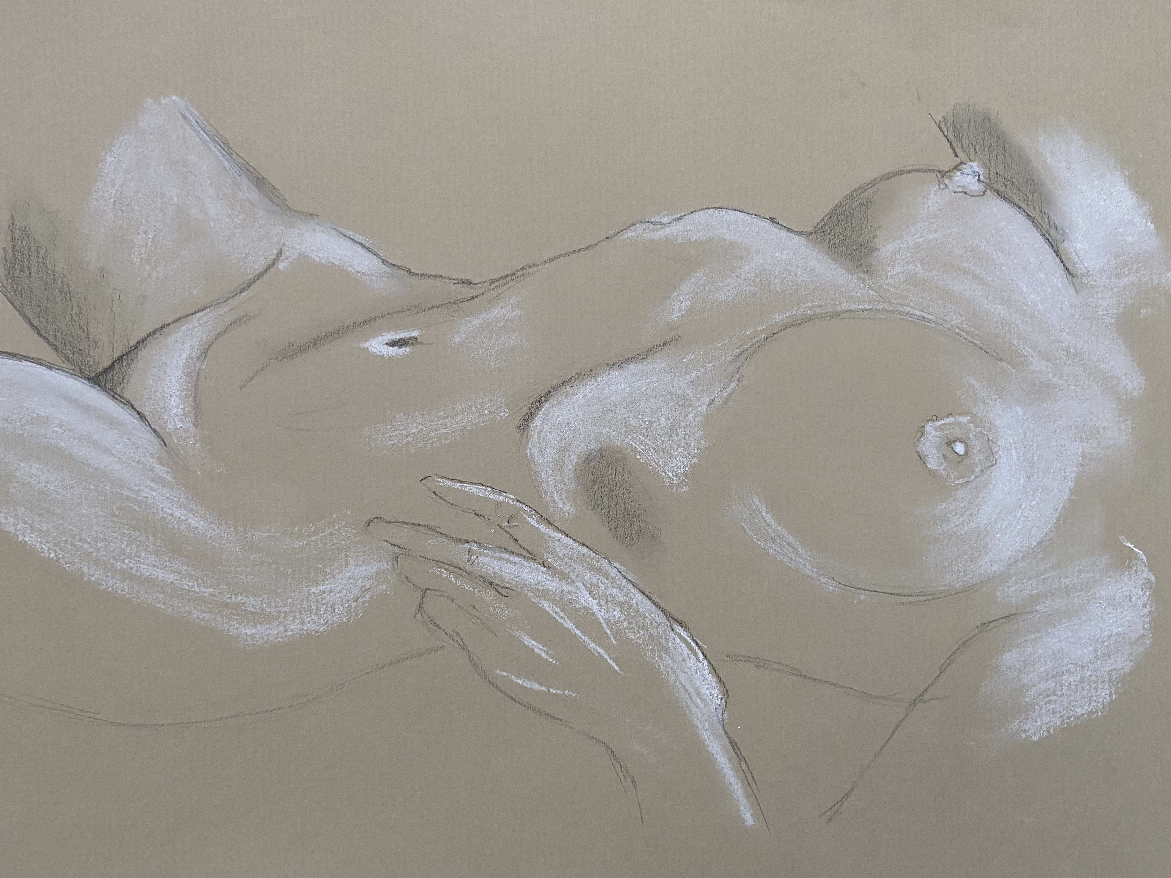 Torse mod�le vivant f�minin dessin crayon de papier craie blanche sur papier gris  cours de dessin