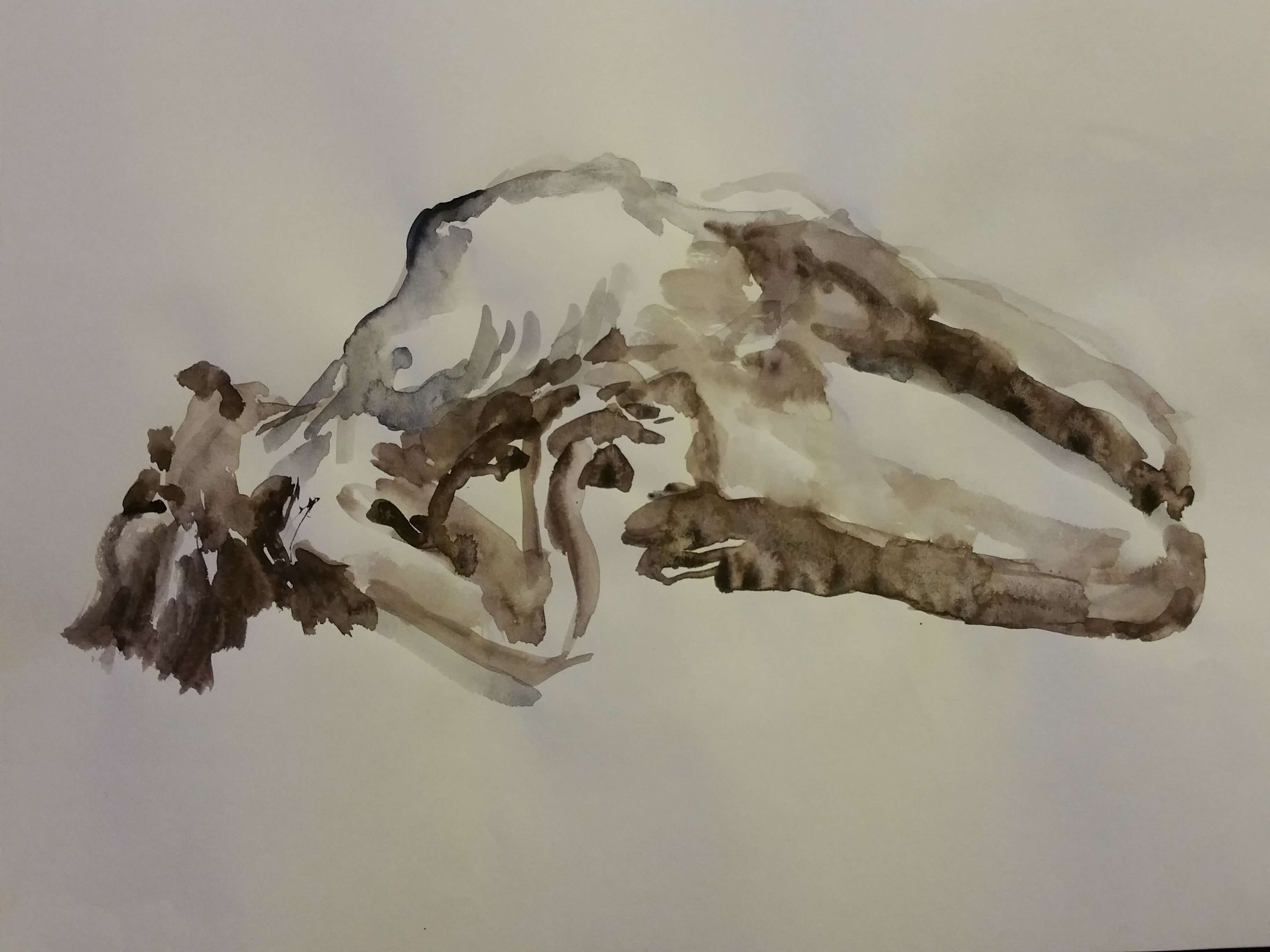 Poses arqu�es aquarelles monochromes  cours de dessin
