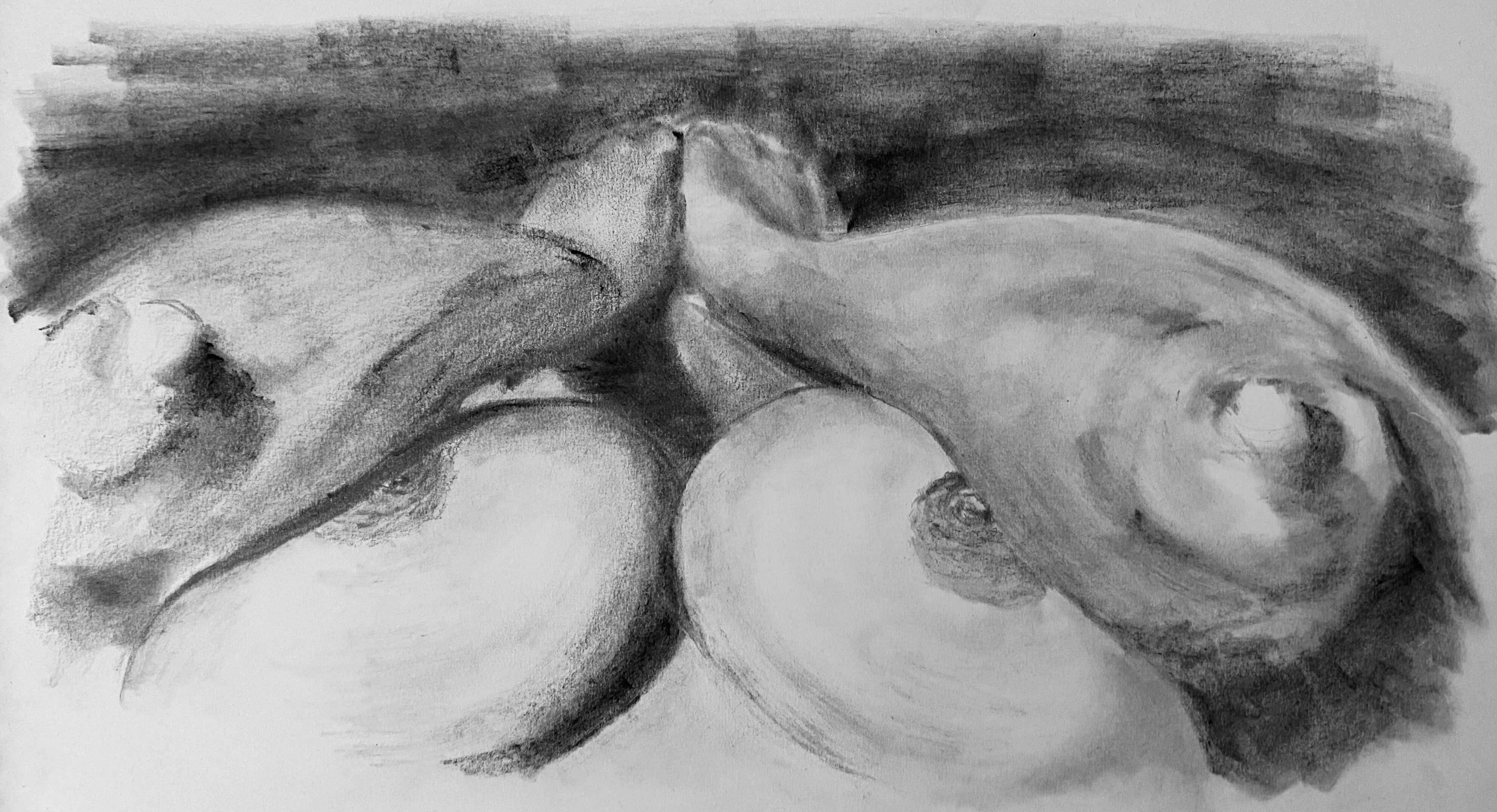 Contre-plong�es buste femme fusain dessin  cours de dessin