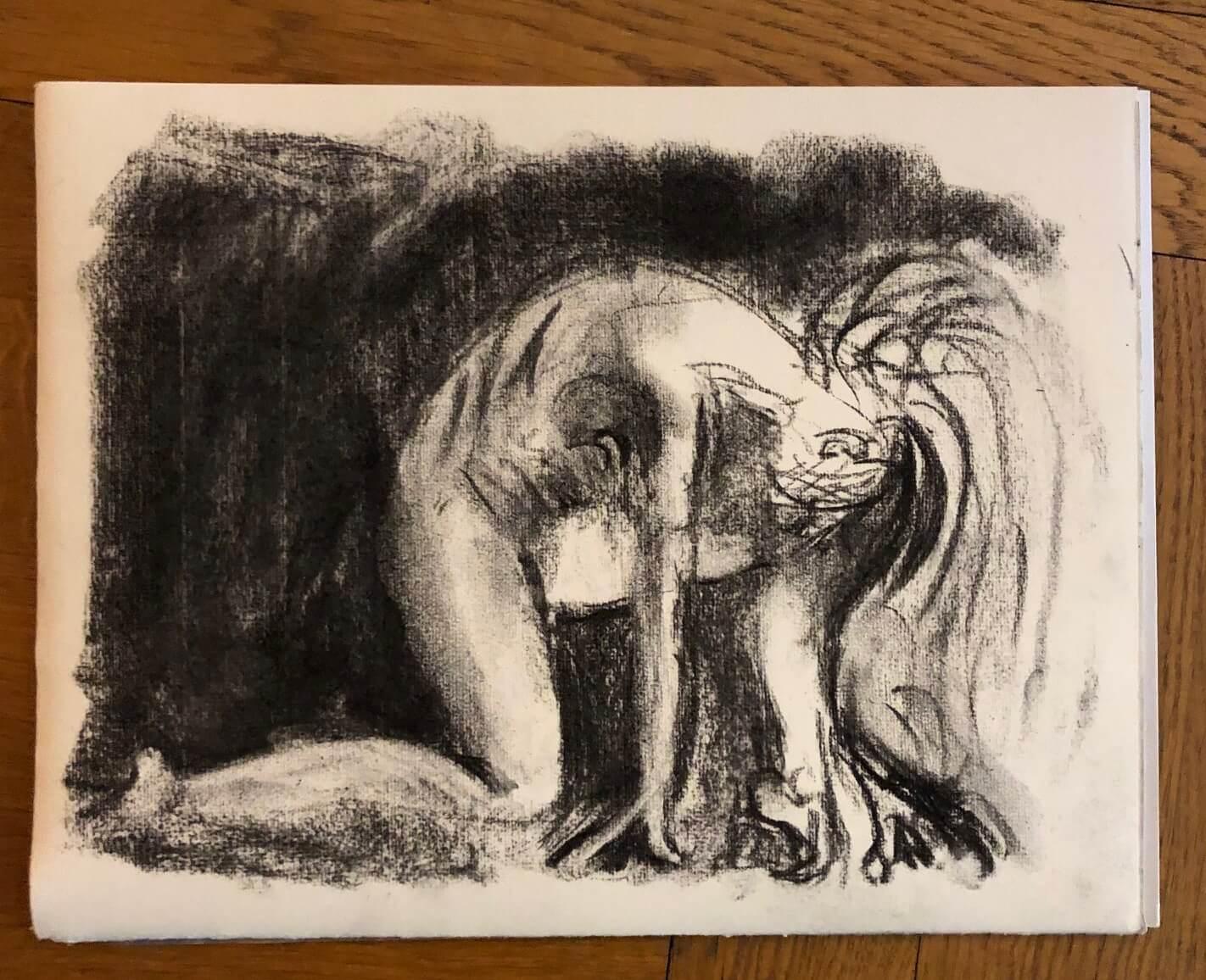 Dessin fusain sur papier ingres mod�le nu  cours de dessin