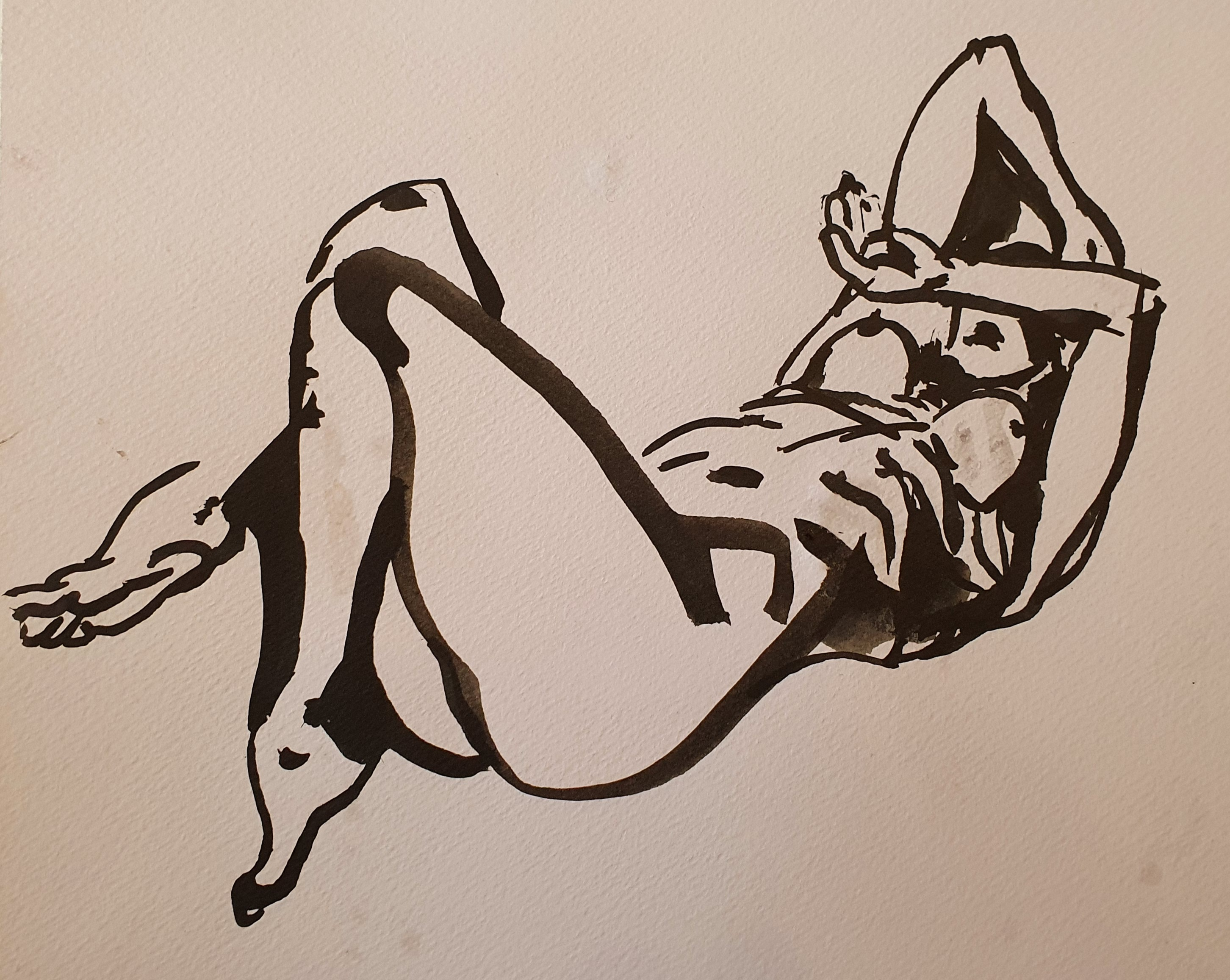 Brou de noix dessin femme allong� dos  cours de dessin