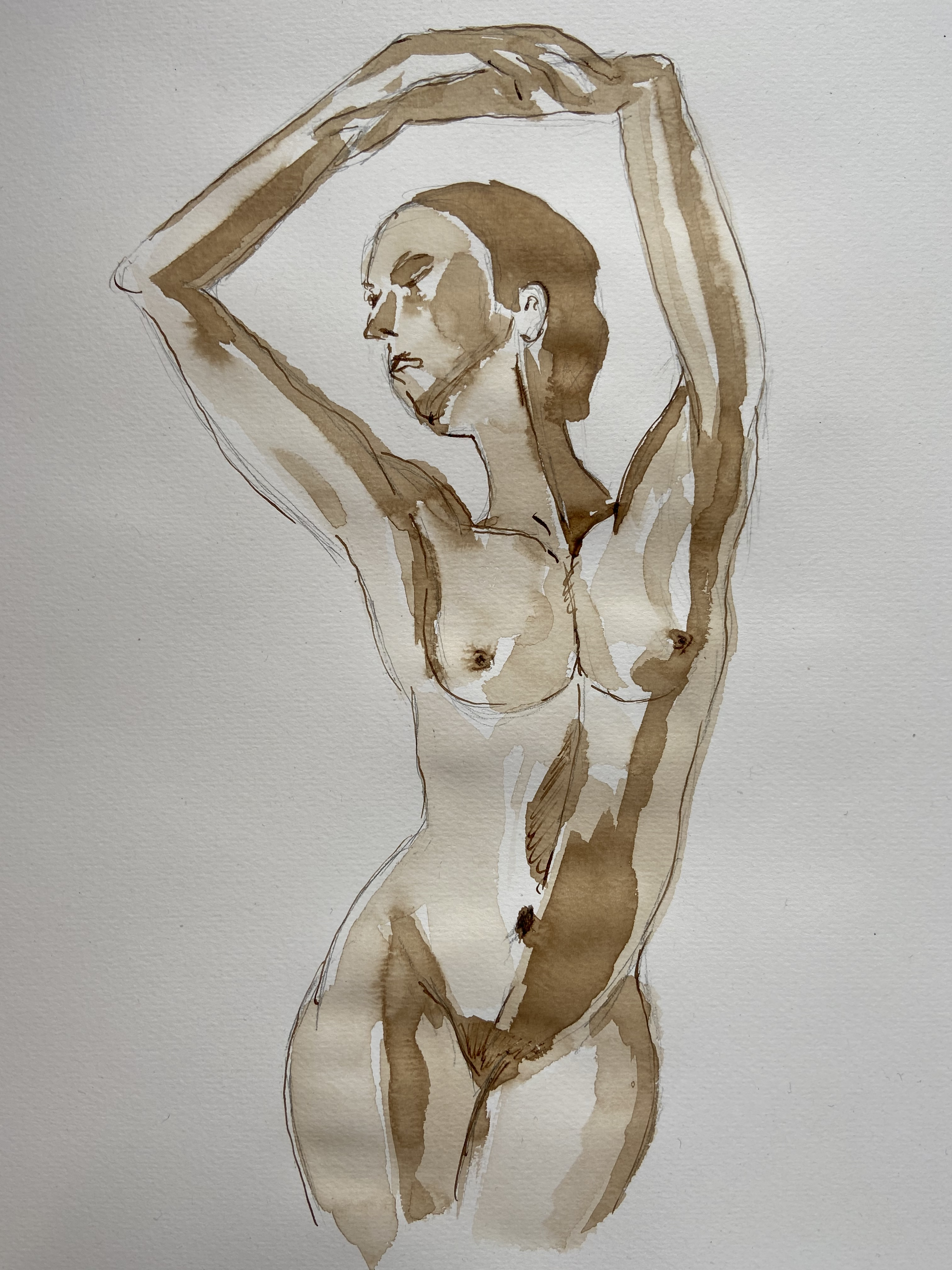 Brou de noix lavi femme danseuse juste sur papier  cours de dessin