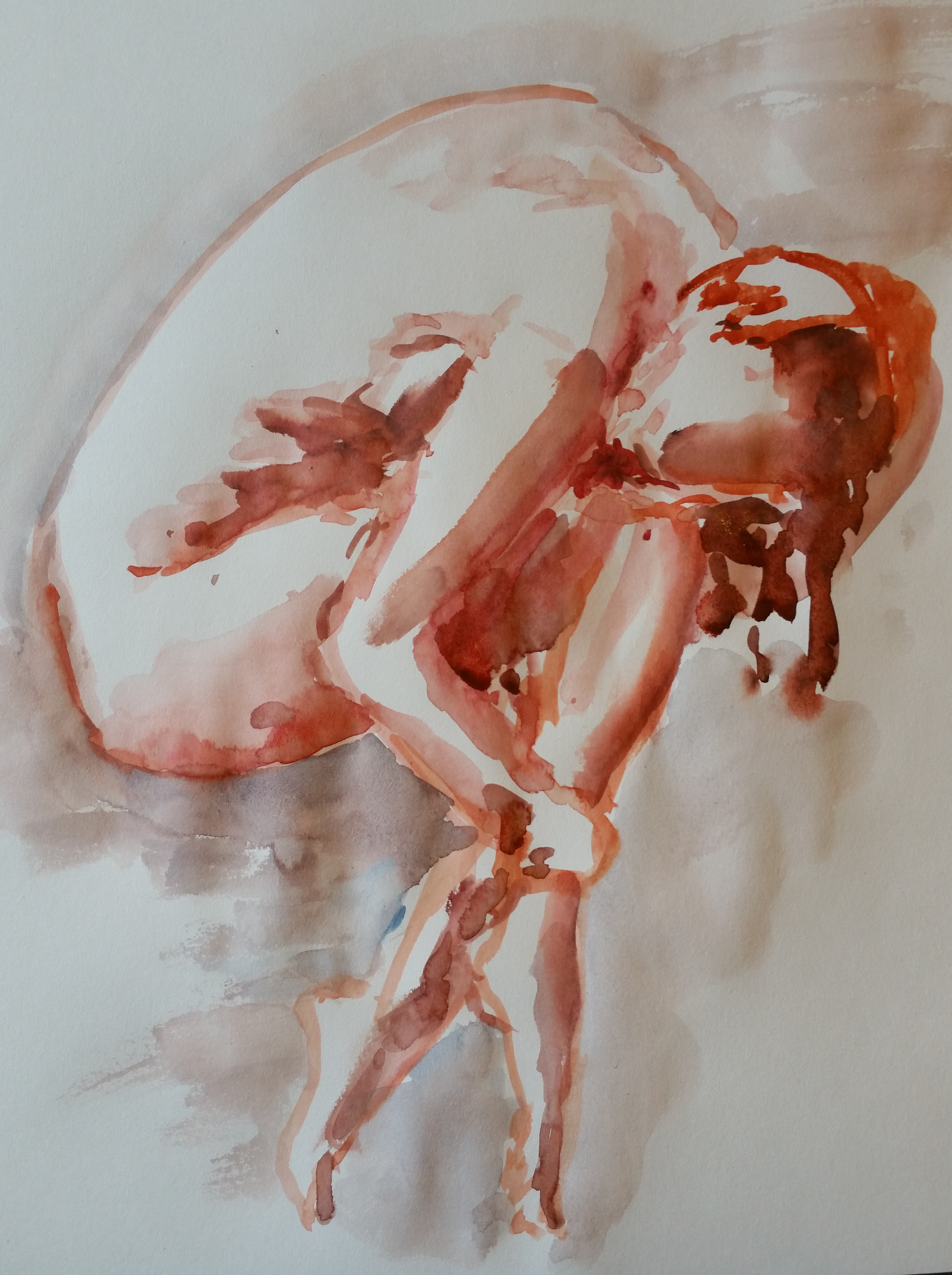 Aquarelle rouge poses regroup�es mod�le vivant dessin  cours de dessin