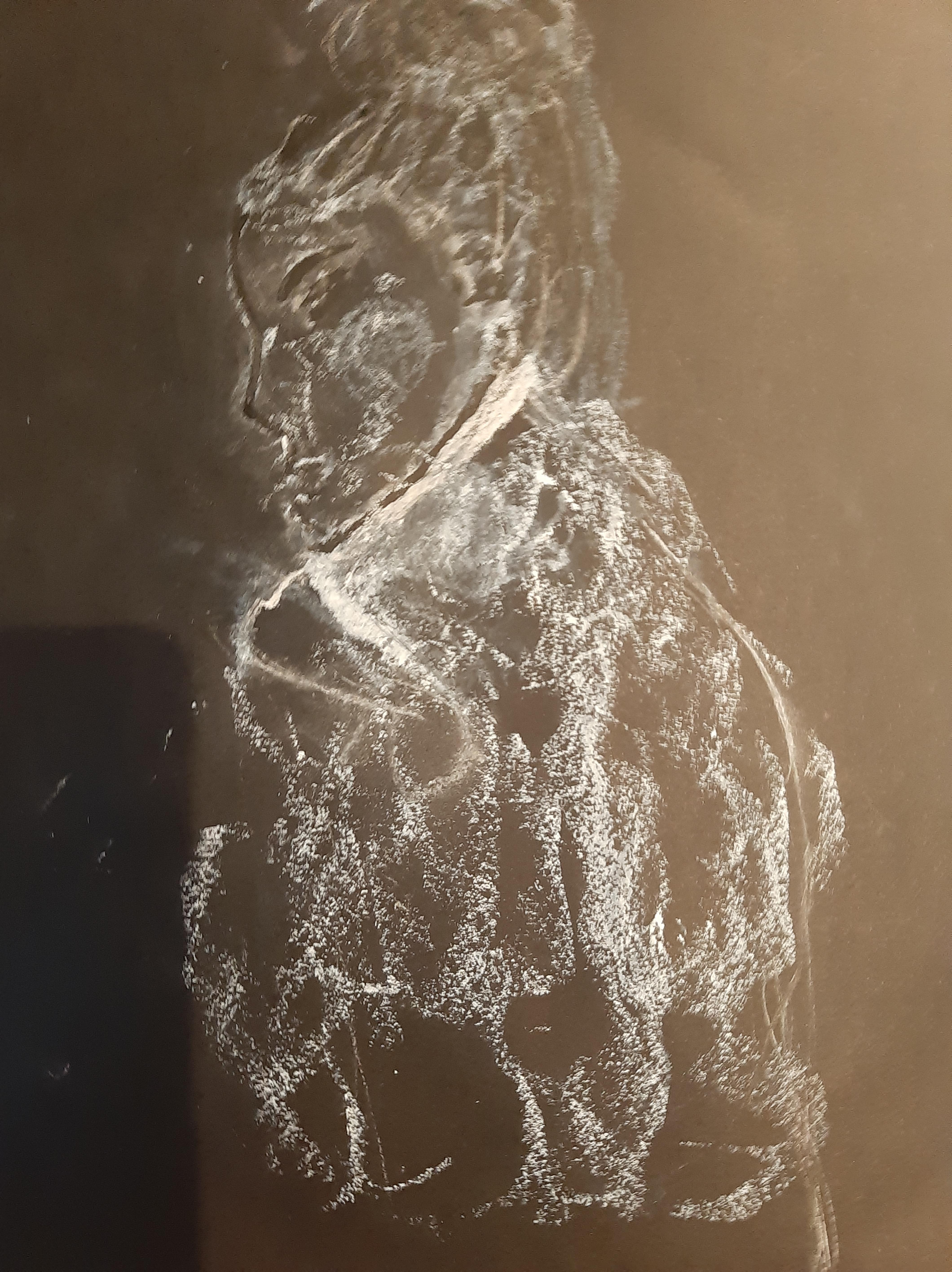 Portrait craie blanche papier noir esquisse  cours de dessin