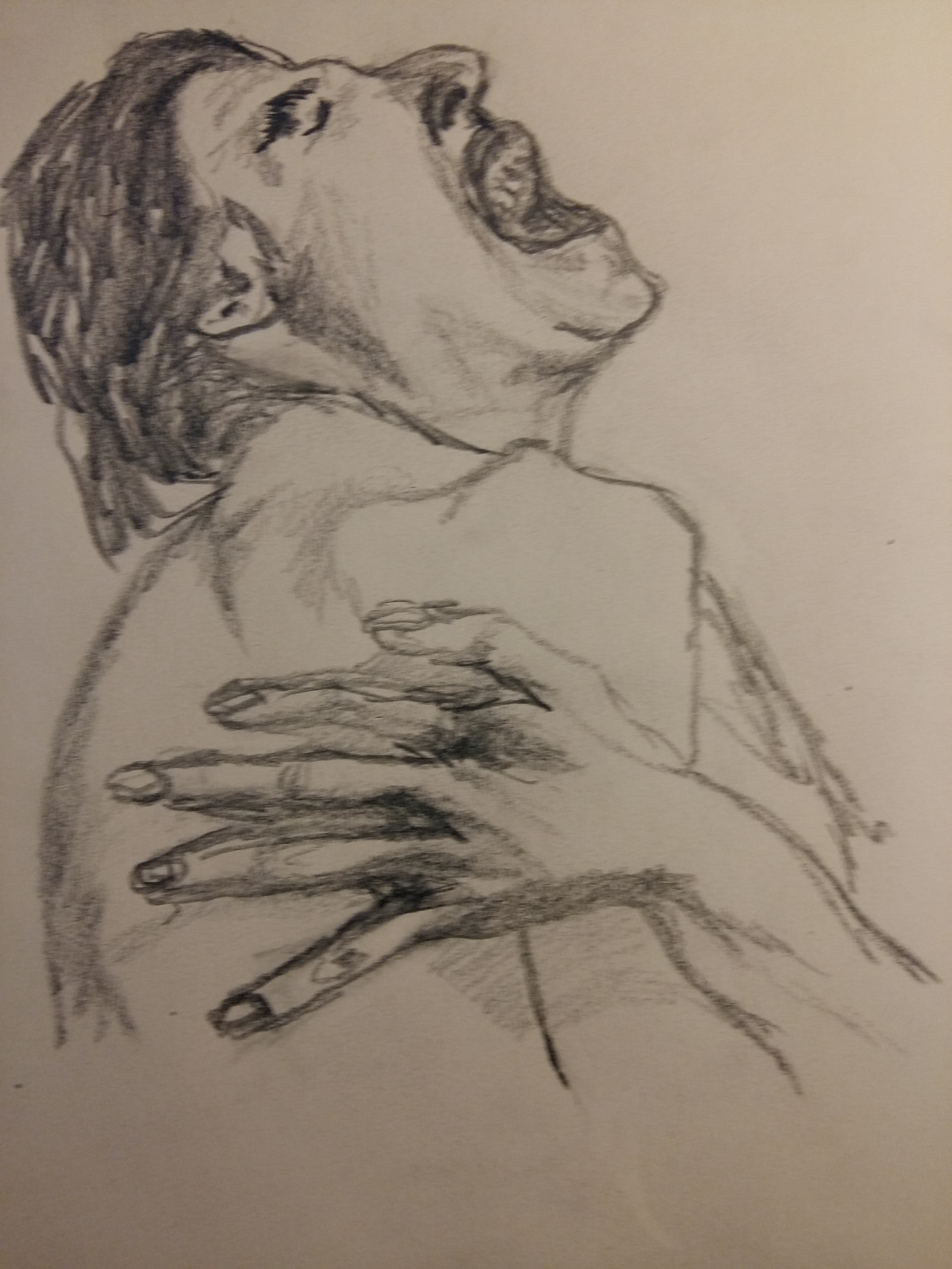 Dessin mine de plomb profil cris  cours de dessin