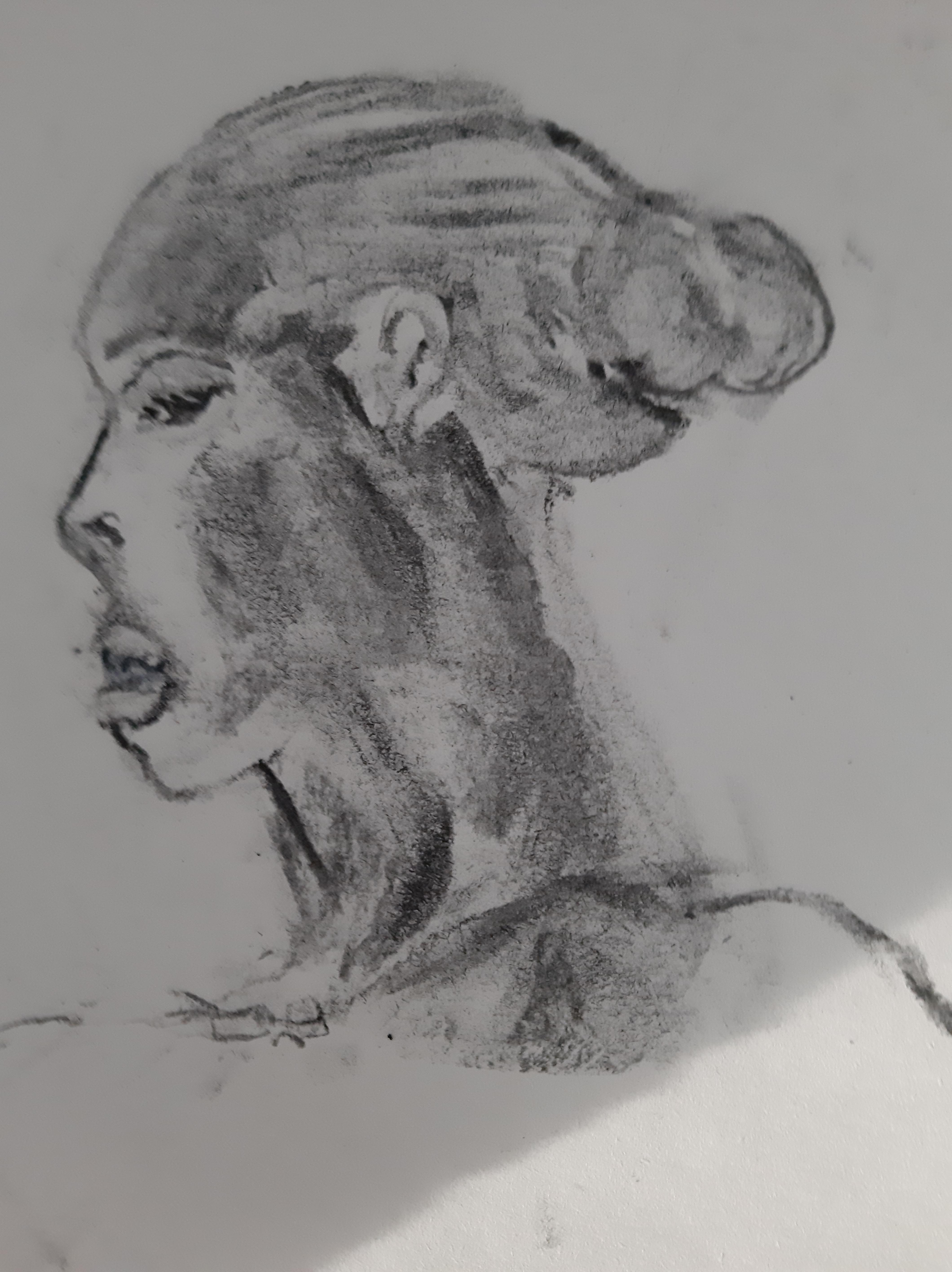 Portrait fusain profil  cours de dessin