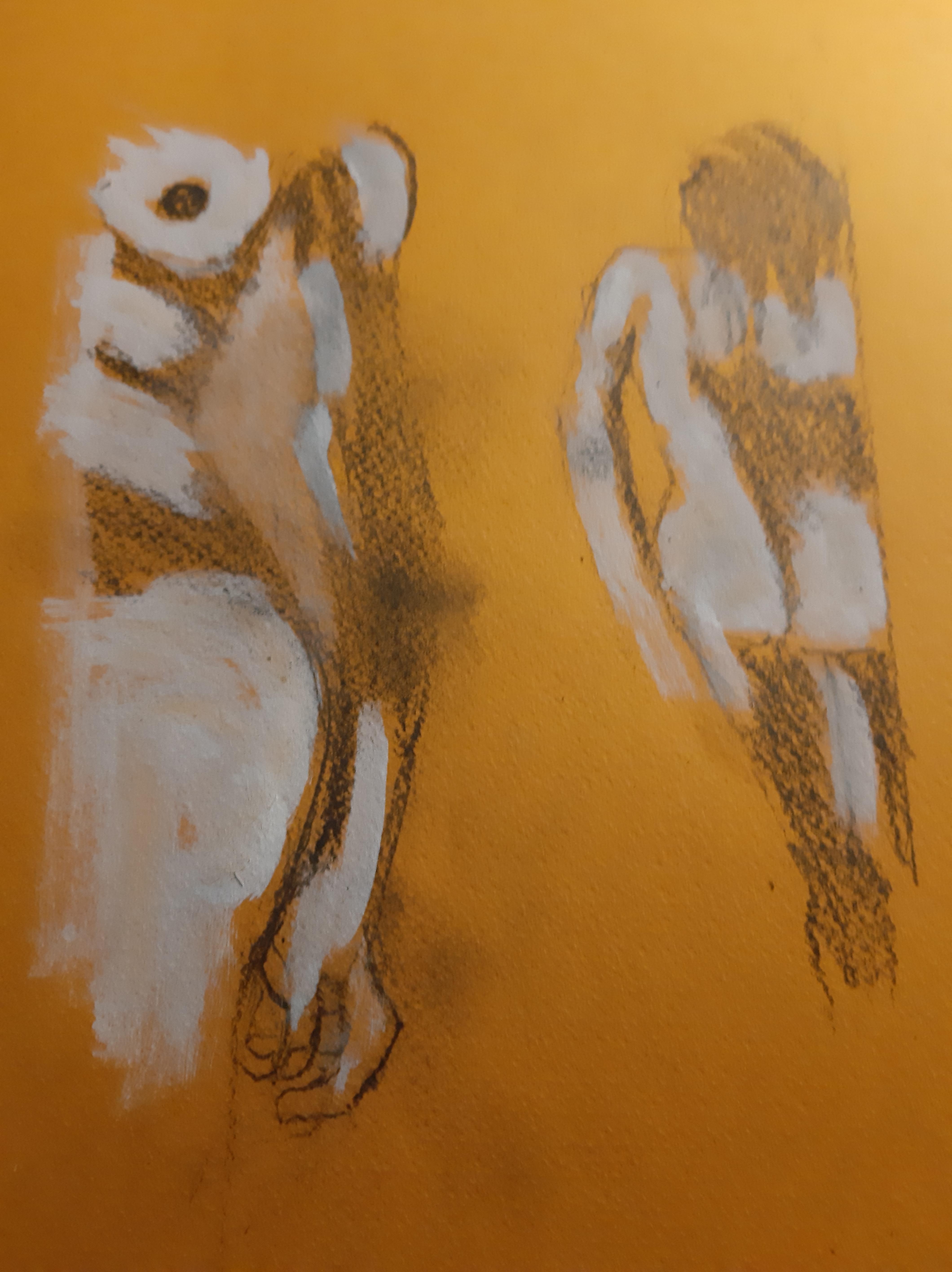 Ébauche technique mixte sur papier Canson couleurs fusain encre de Chine blanche estompe graphite  cours de dessin
