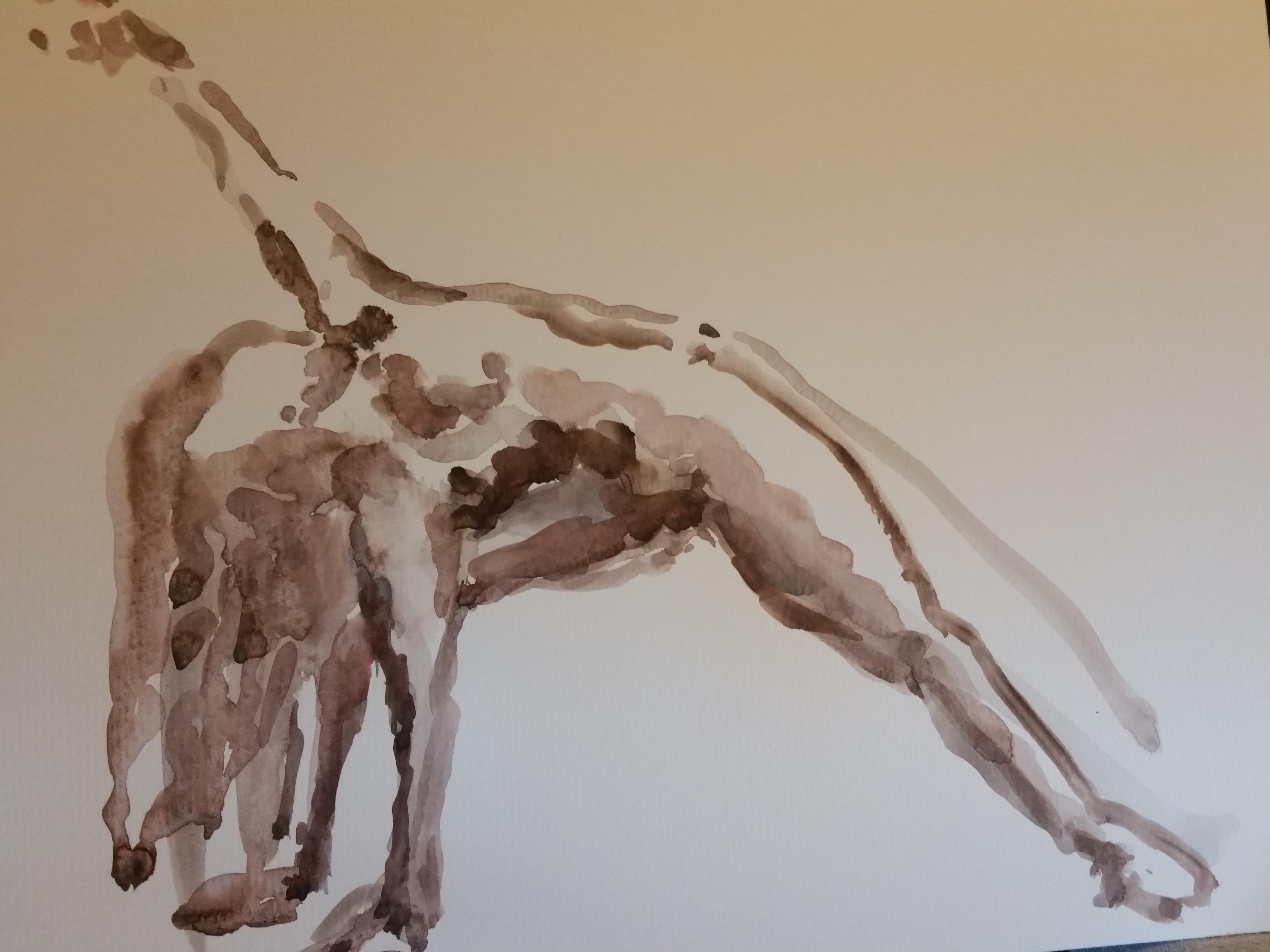 Poses en extension aquarelle sur papier  cours de dessin