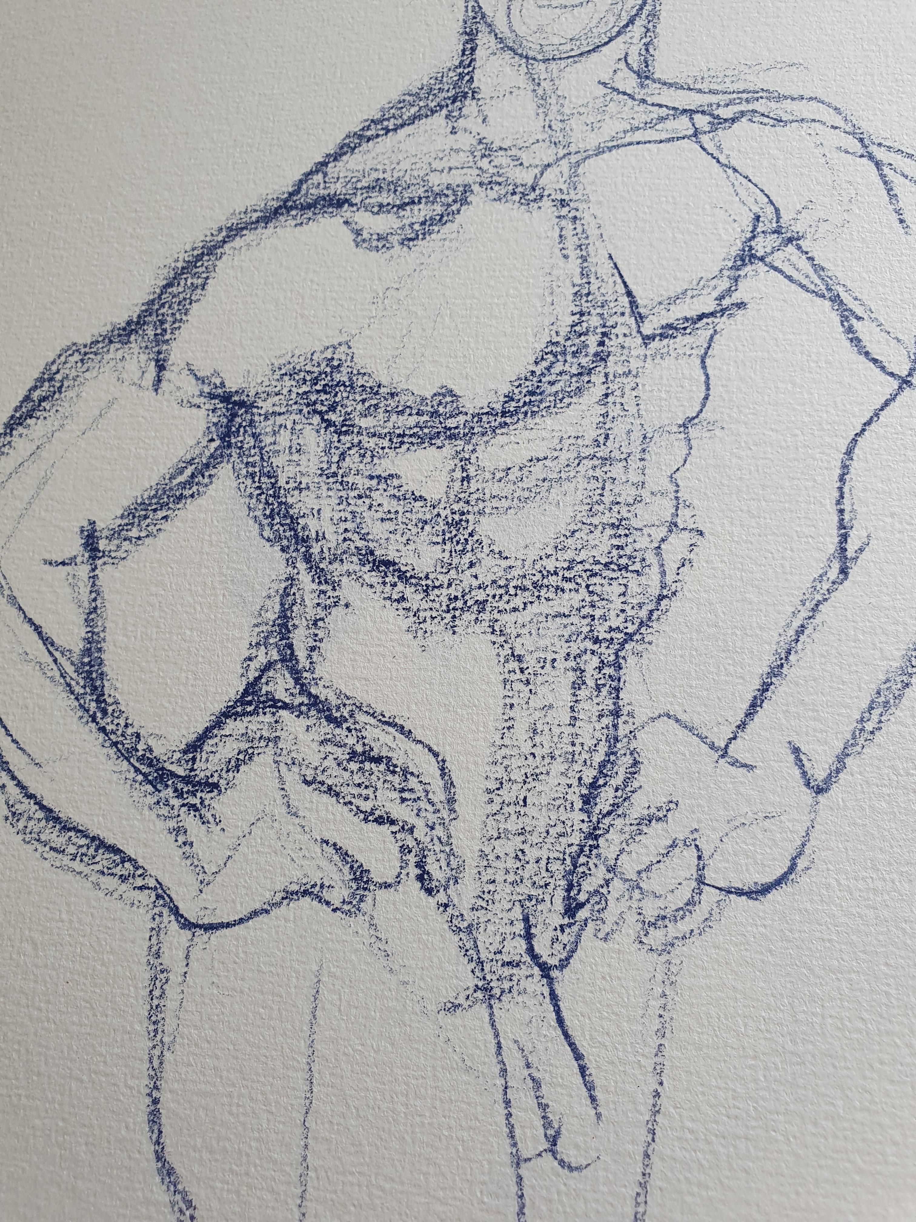 Dessin torse homme pastel bleu  cours de dessin