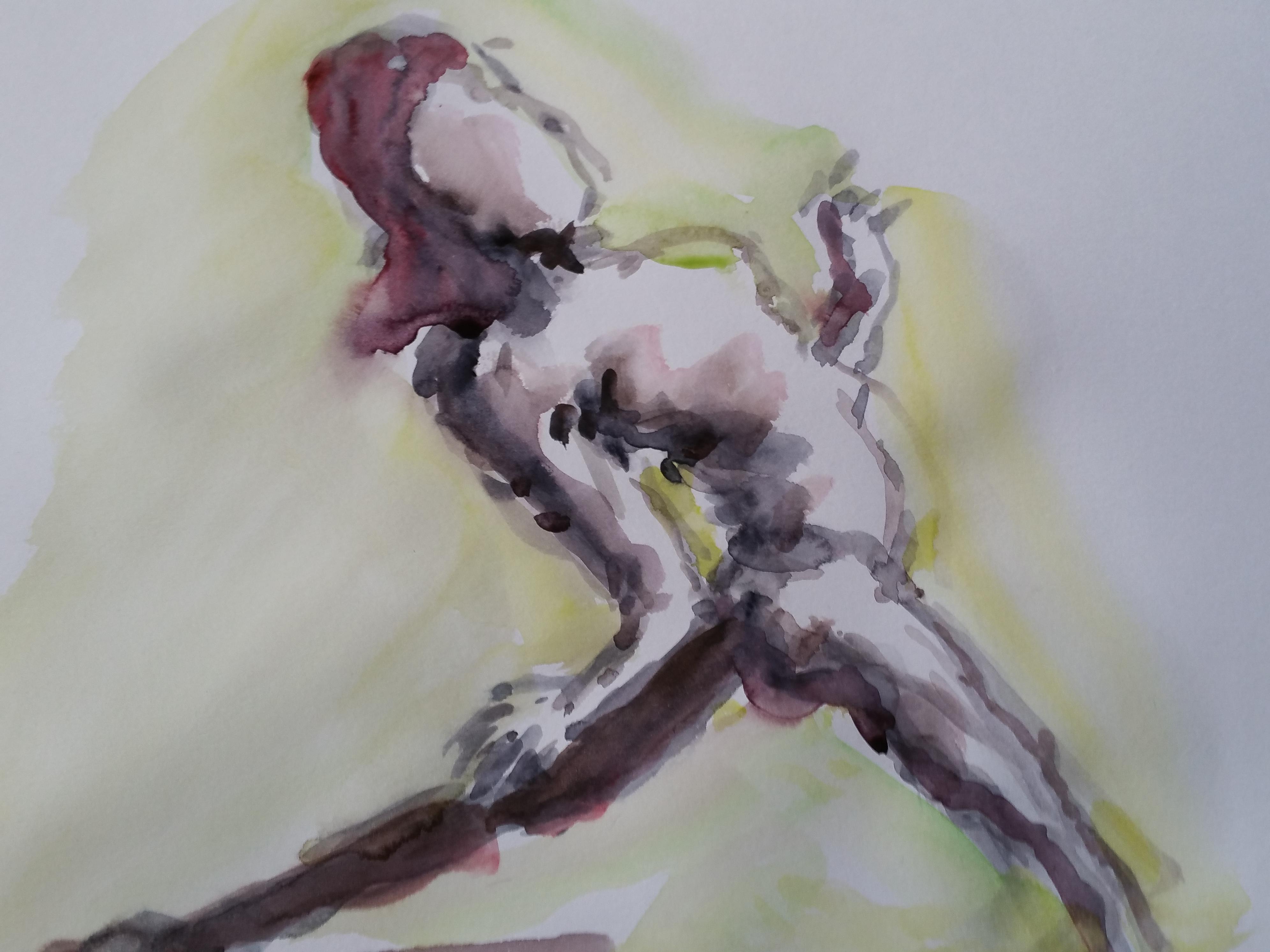 Dessin dense aquarelle polychrome  cours de dessin
