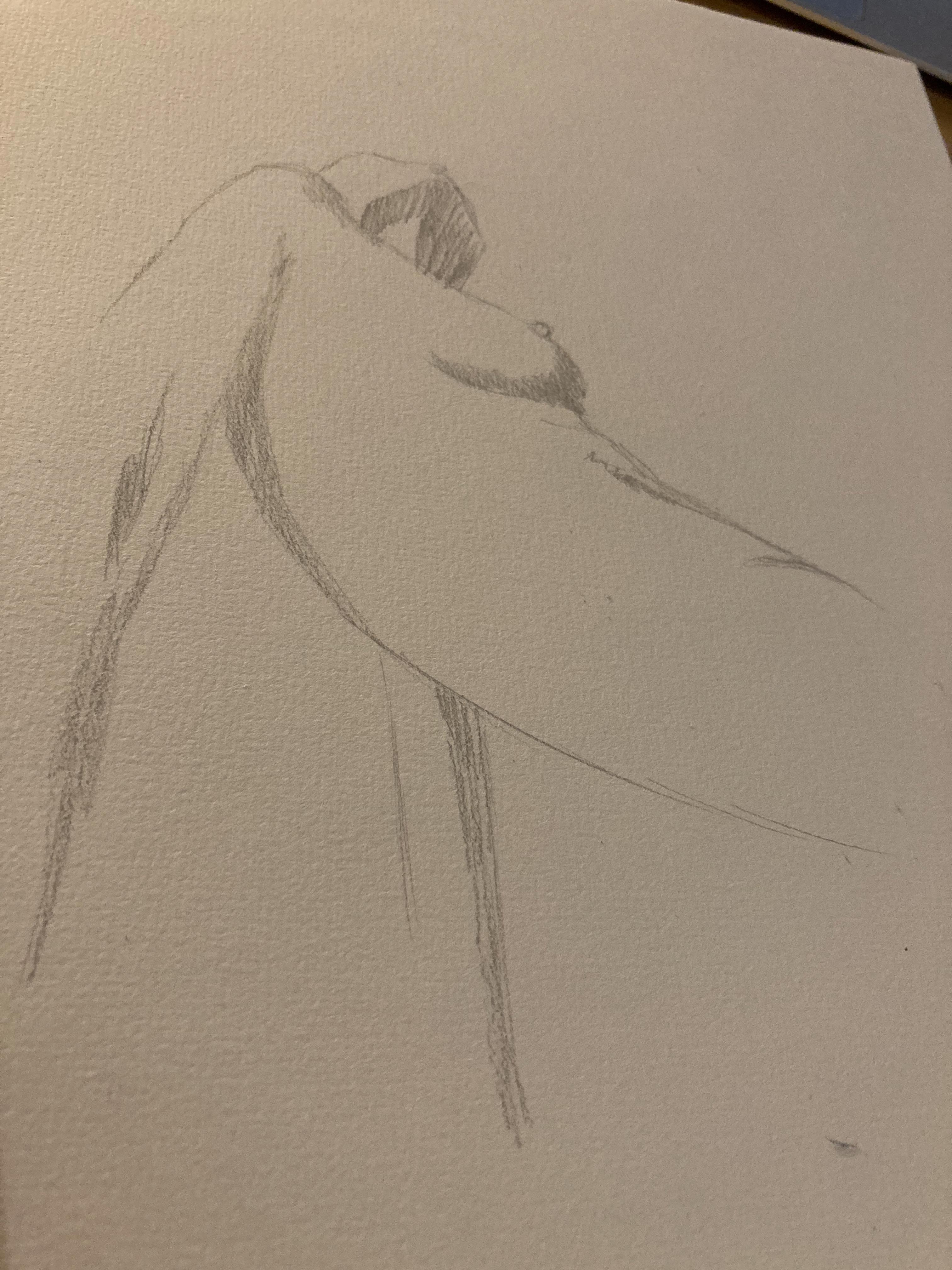 Esquisse rapide hachures corps en contre-plongées dessin réalisées lors de nos cours de dessin  cours de dessin