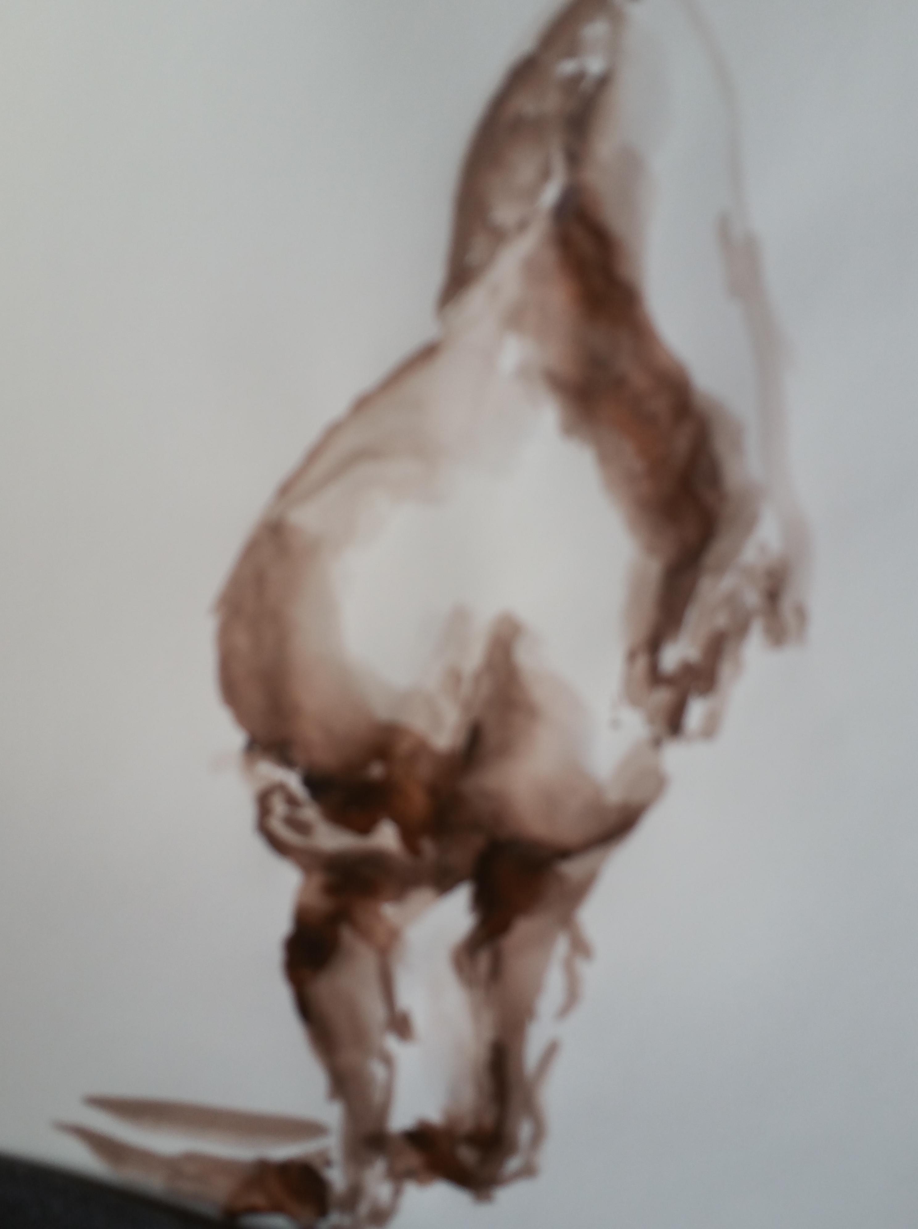 Aquarelle dos marron esquisse  cours de dessin