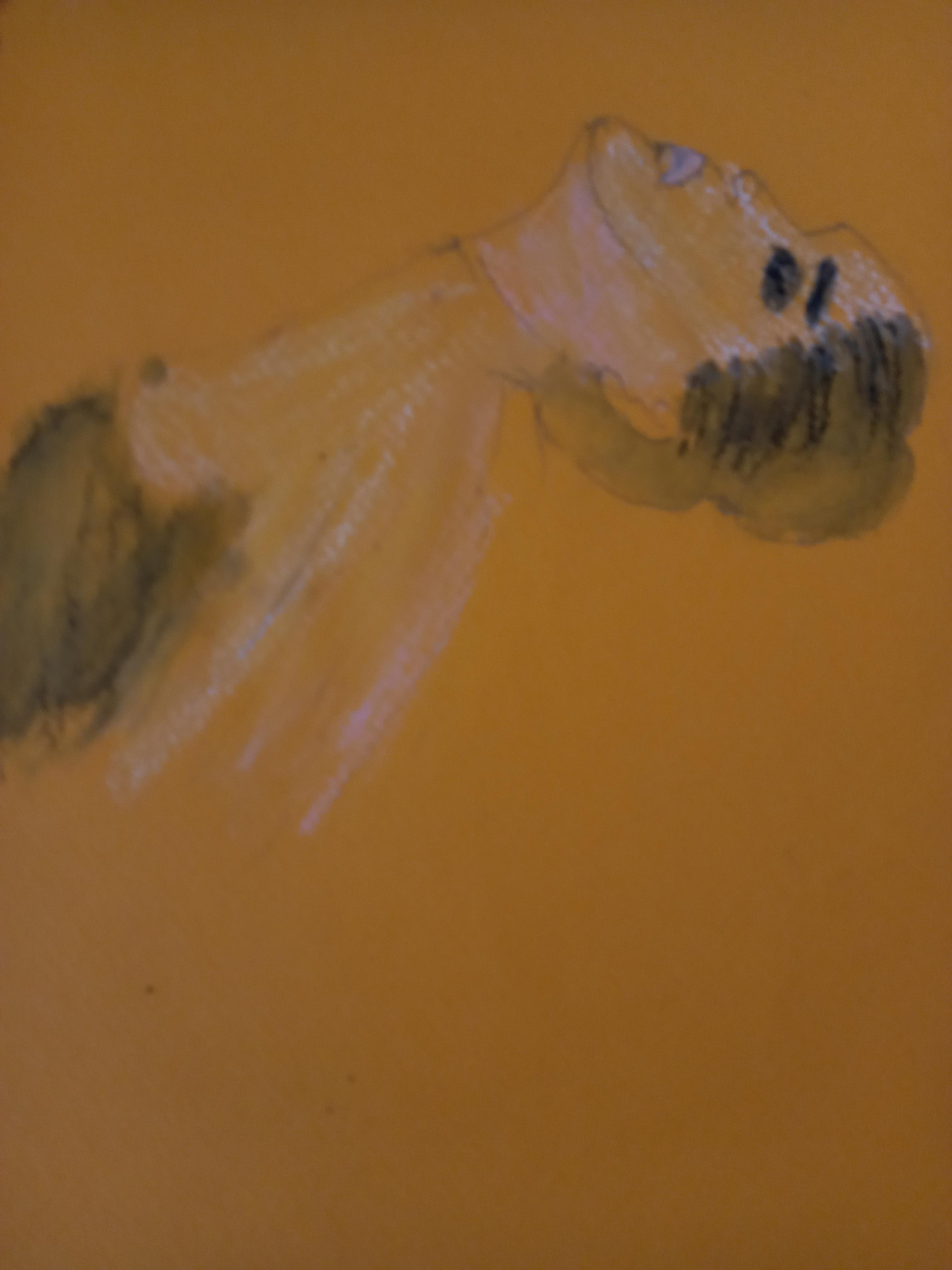 Portraits pastels papier marron  cours de dessin