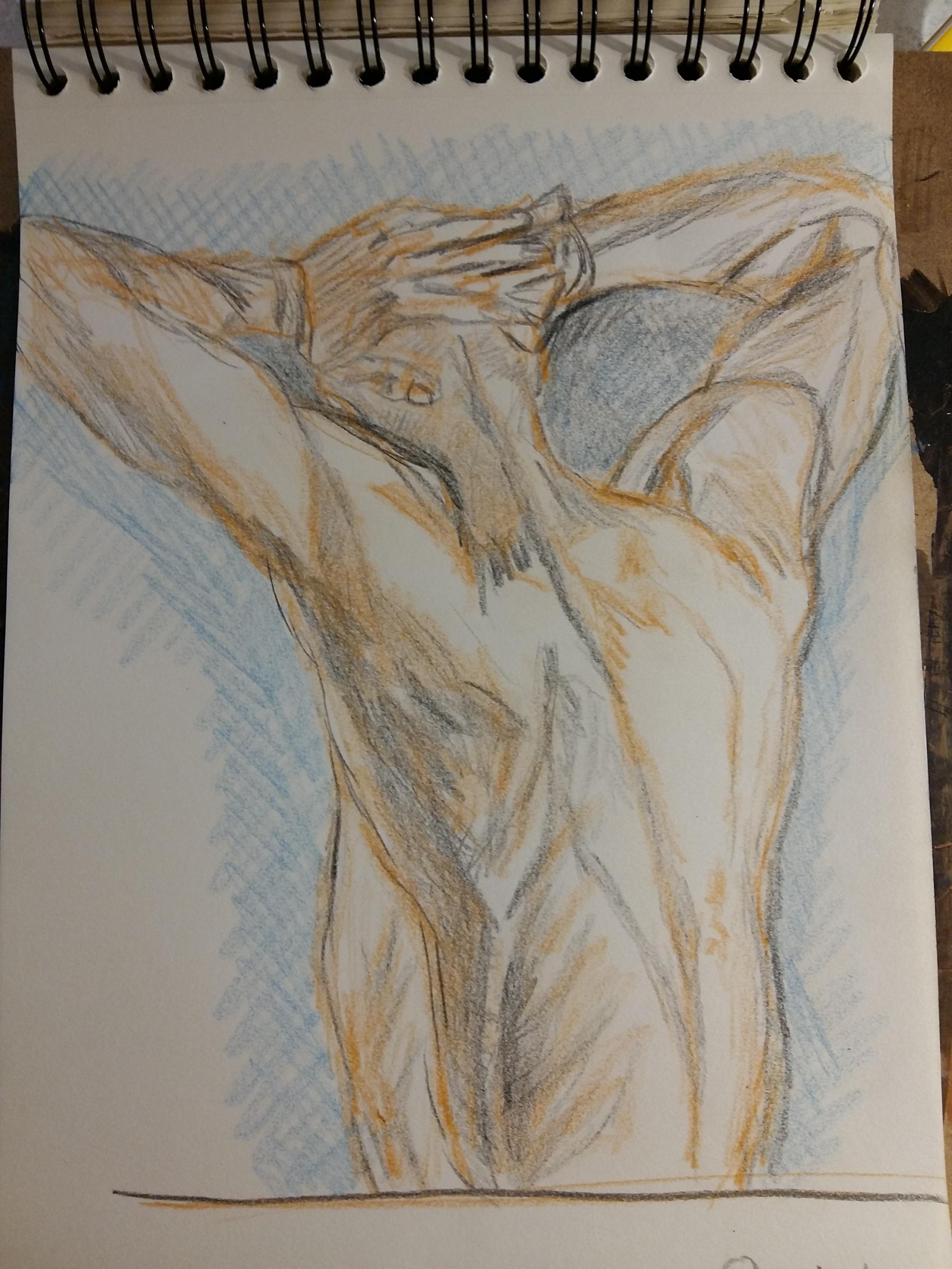 Étude dessin crayon de couleur dos trois quarts  cours de dessin