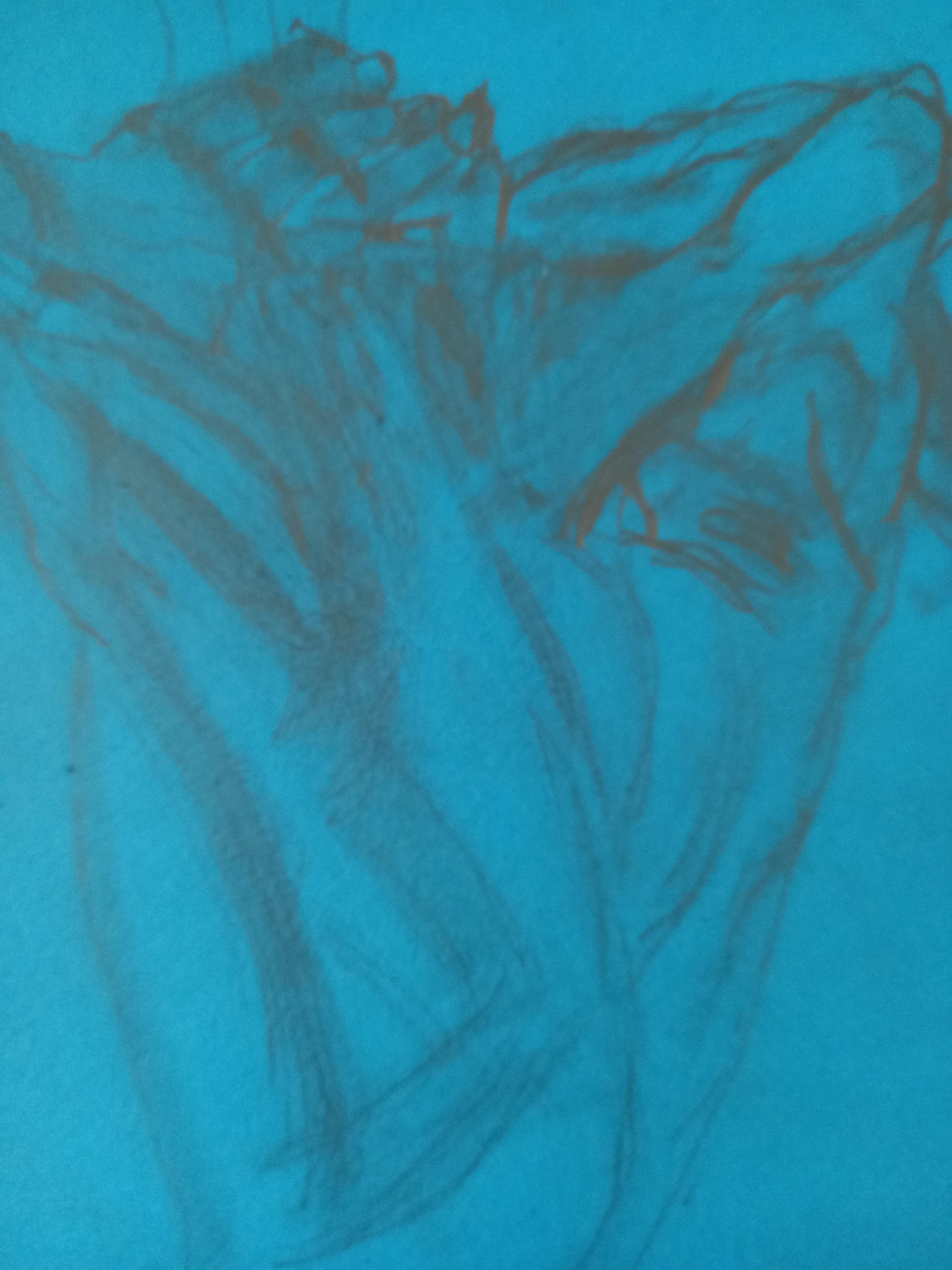 Esquisse étude dos homme pastel sur fond Canson bleu  cours de dessin